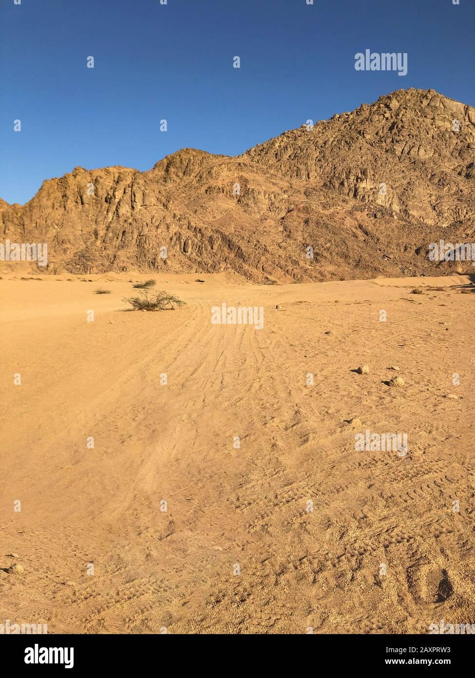 Désert avec montagnes. Egypte. Ciel bleu clair Banque D'Images