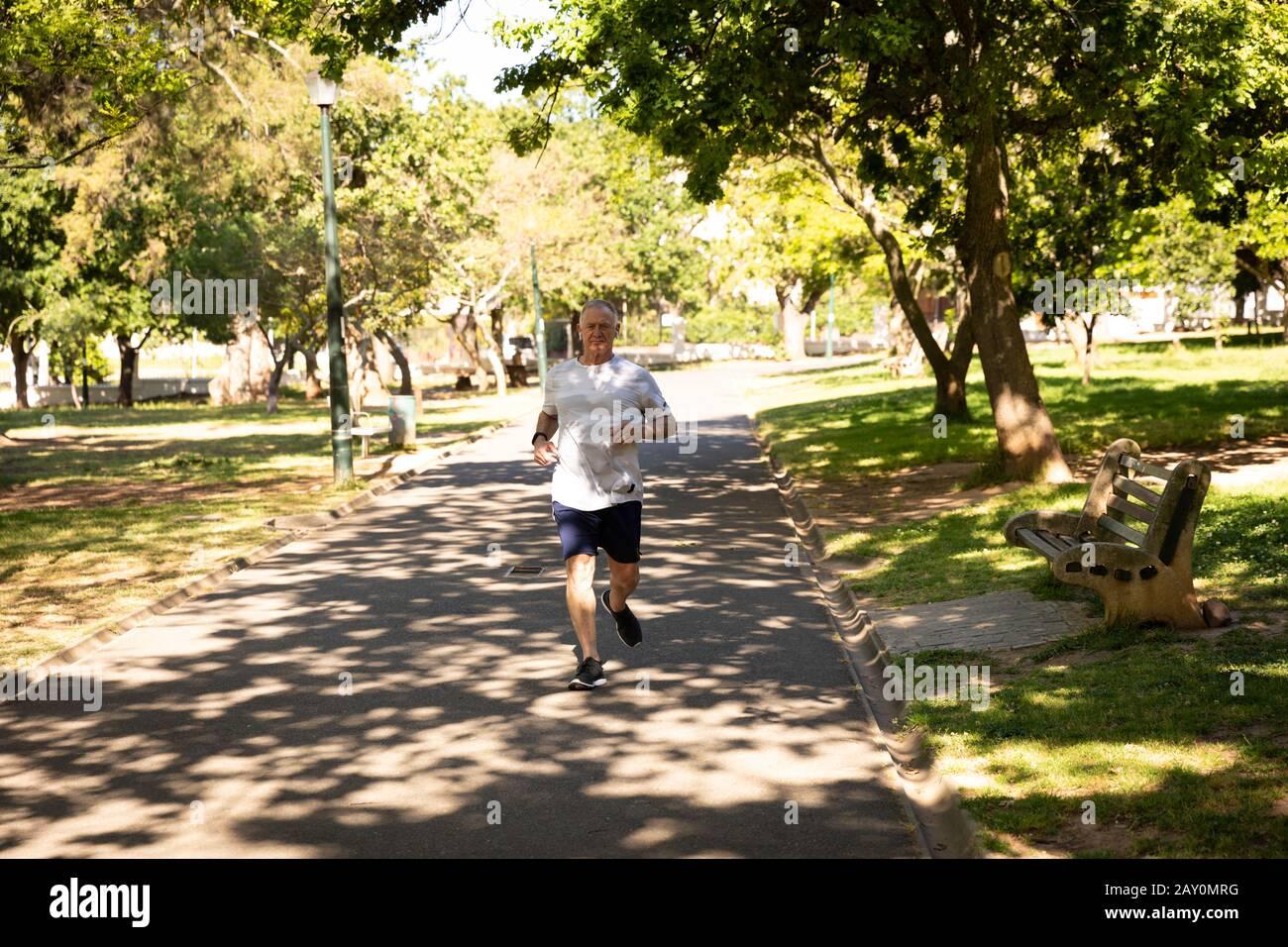 Jogging dans le parc Banque D'Images