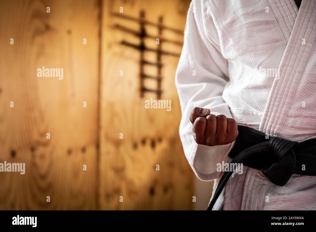 Judoka debout devant l'appareil photo Banque D'Images