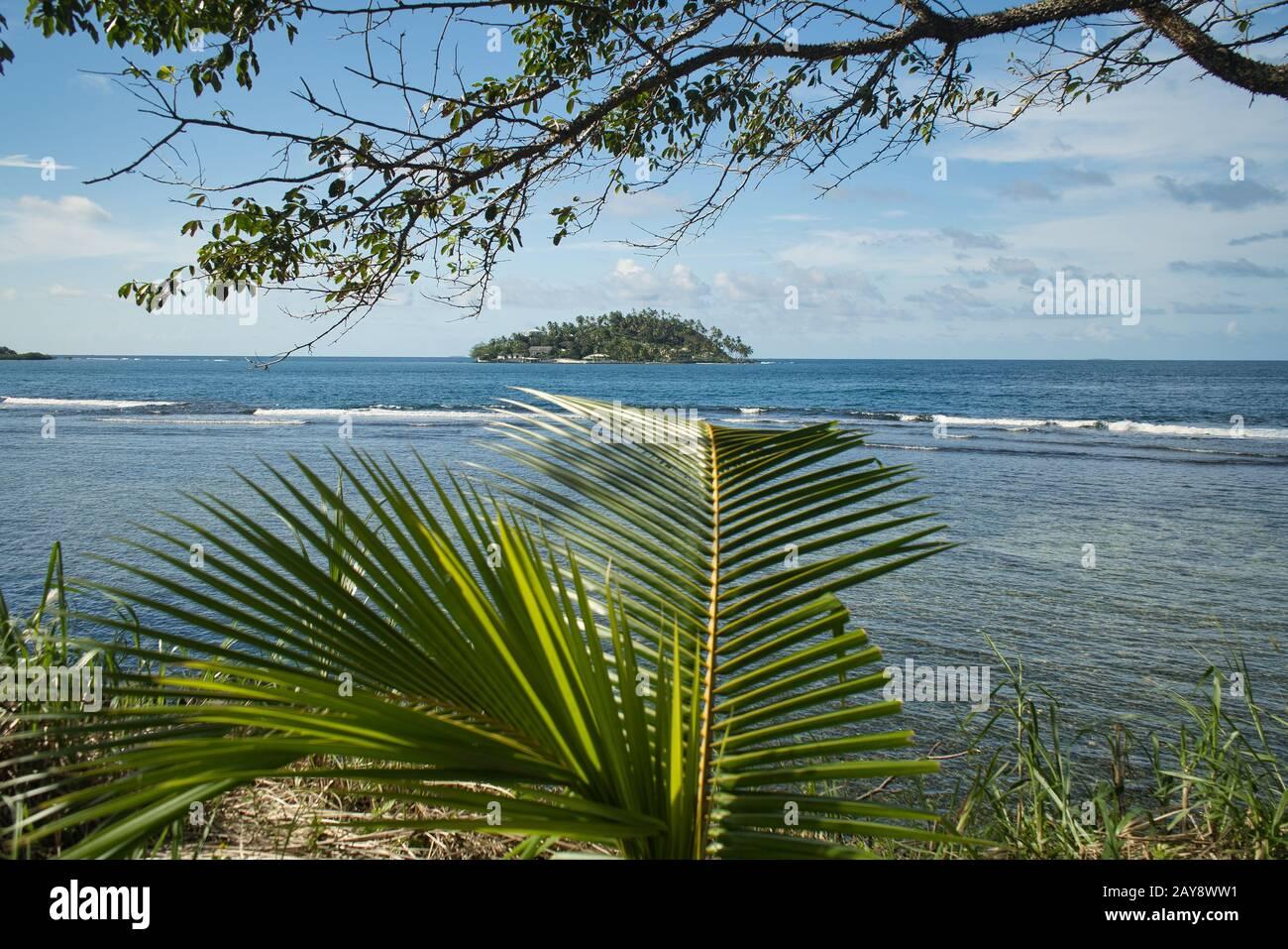 Photographié par des palmiers sur une petite île de la mer des Caraïbes - appels de Wanderlust Banque D'Images