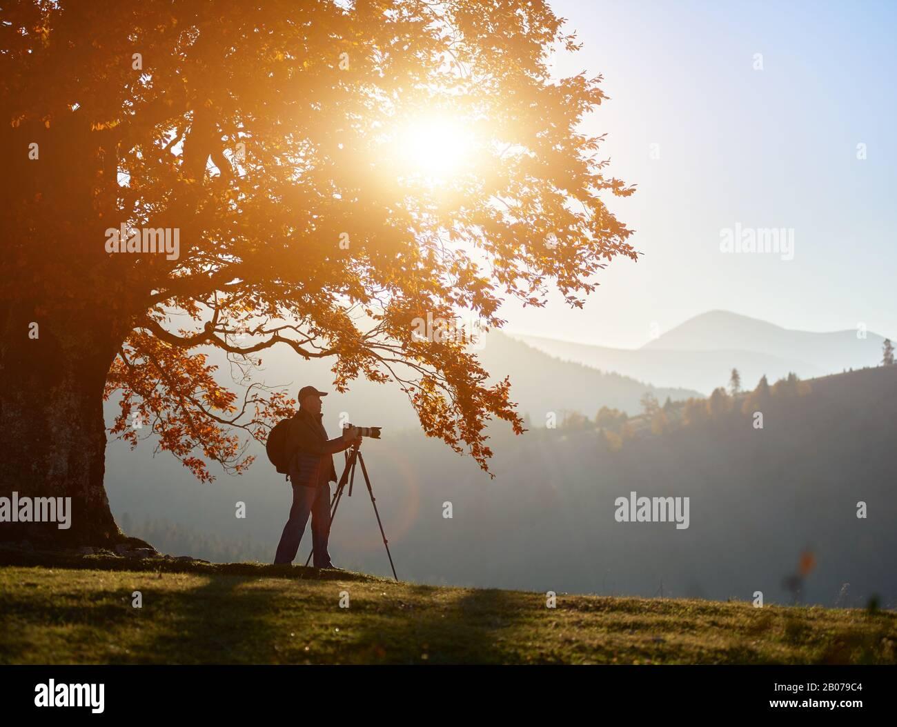 Photographe touristique masculin avec sac à dos, trépied et appareil photo professionnel debout sous un grand arbre en chêne avec des feuilles dorées sur le paysage boisé des montagnes brumeuses et le soleil brillant sur fond bleu ciel. Banque D'Images