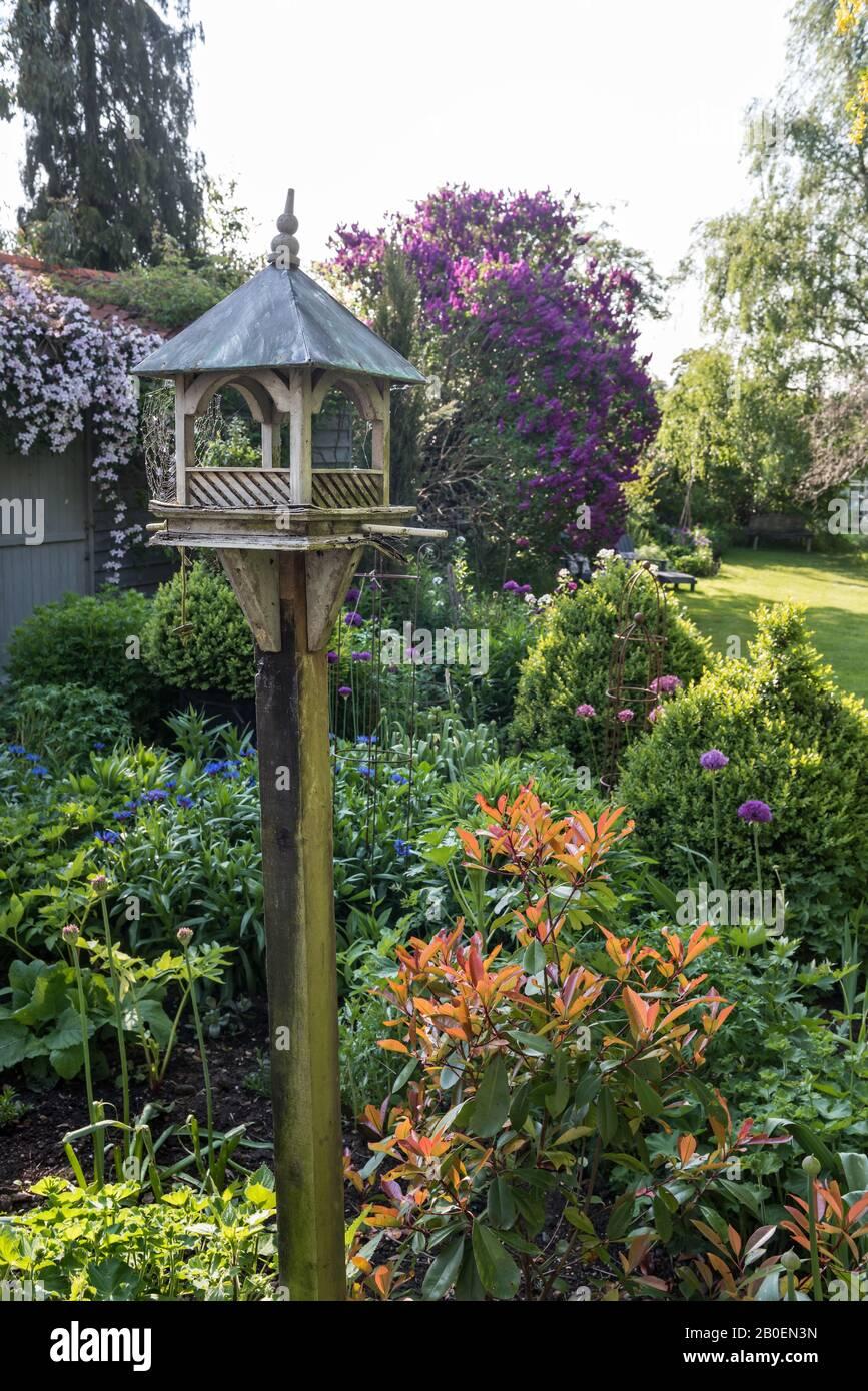 Service d'alimentation pour oiseaux dans le jardin ensoleillé du Suffolk Banque D'Images