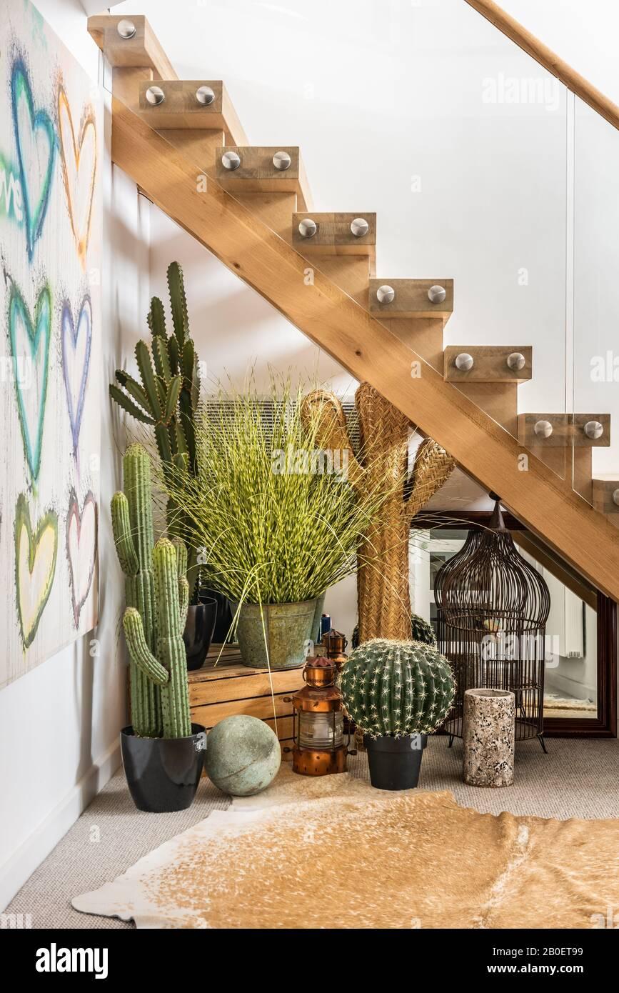 Escalier en chêne et en verre avec cactus dans les années 1960 rénovation côtière Banque D'Images