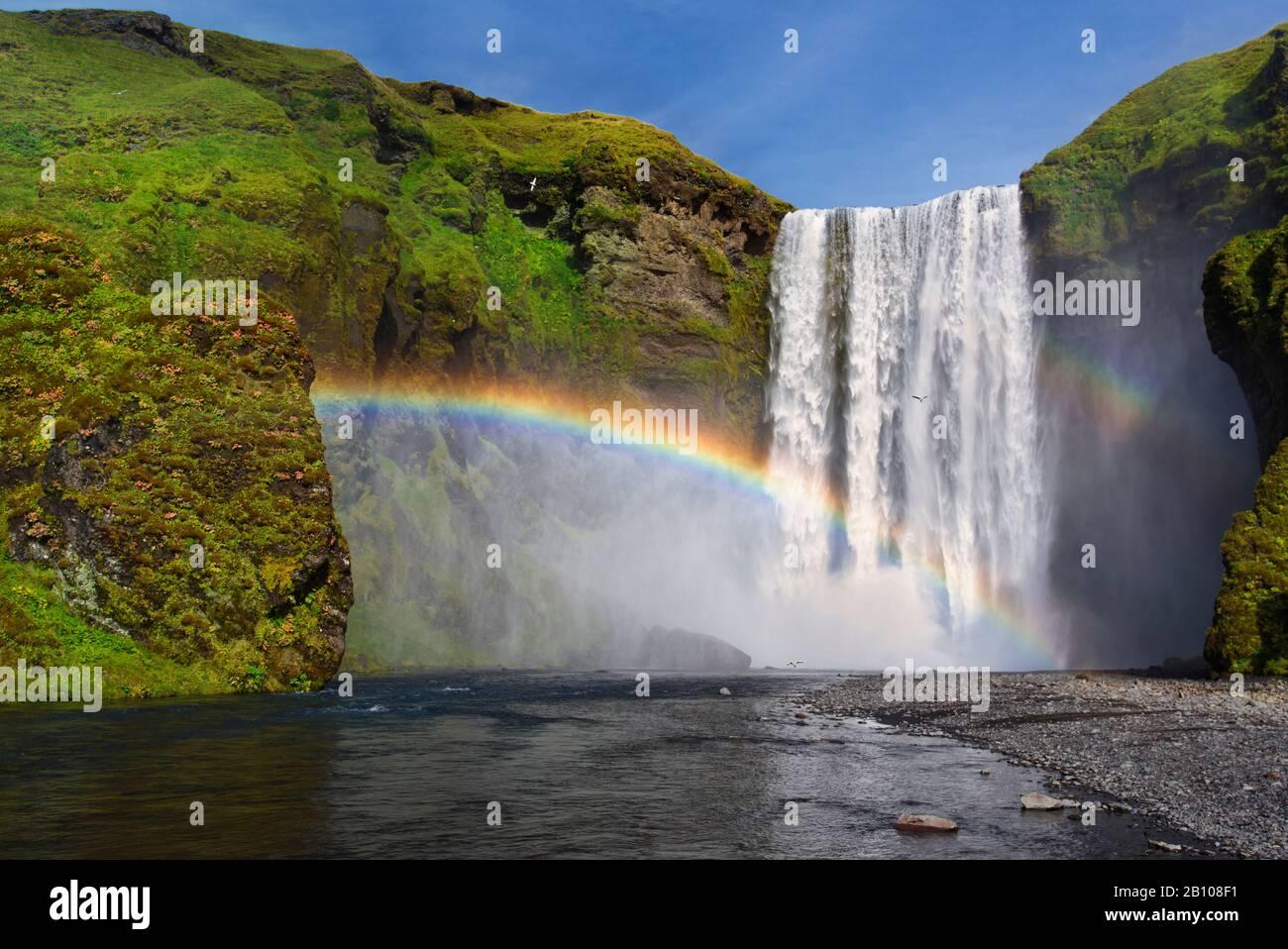 Chute d'eau de Skogafoss au soleil avec arc-en-ciel, Skogar, Islande Banque D'Images