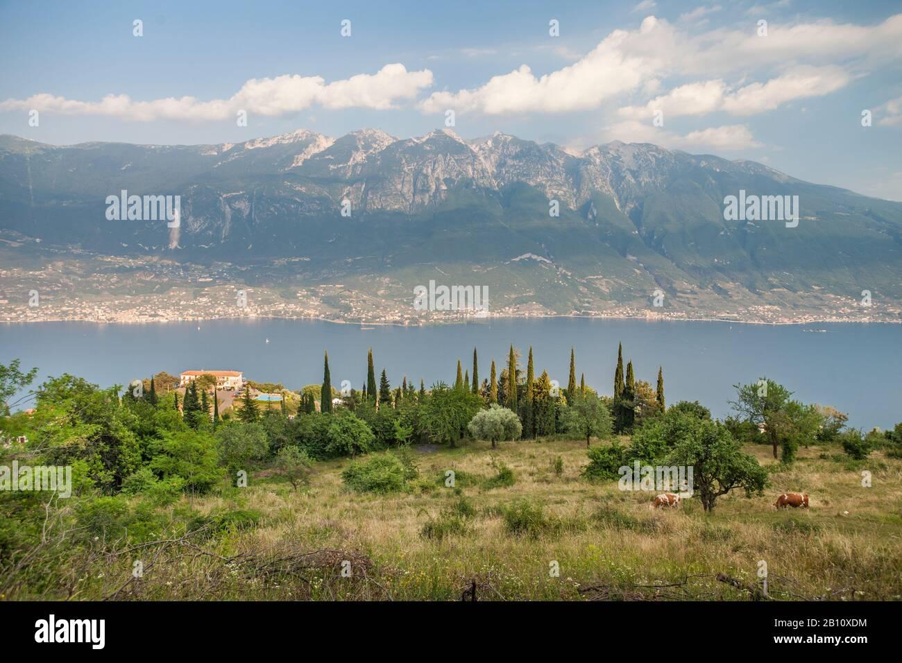 Vue sur le lac de Garde et le mont Baldo, de Pieve di Tremosine, Brescia, Italie Banque D'Images