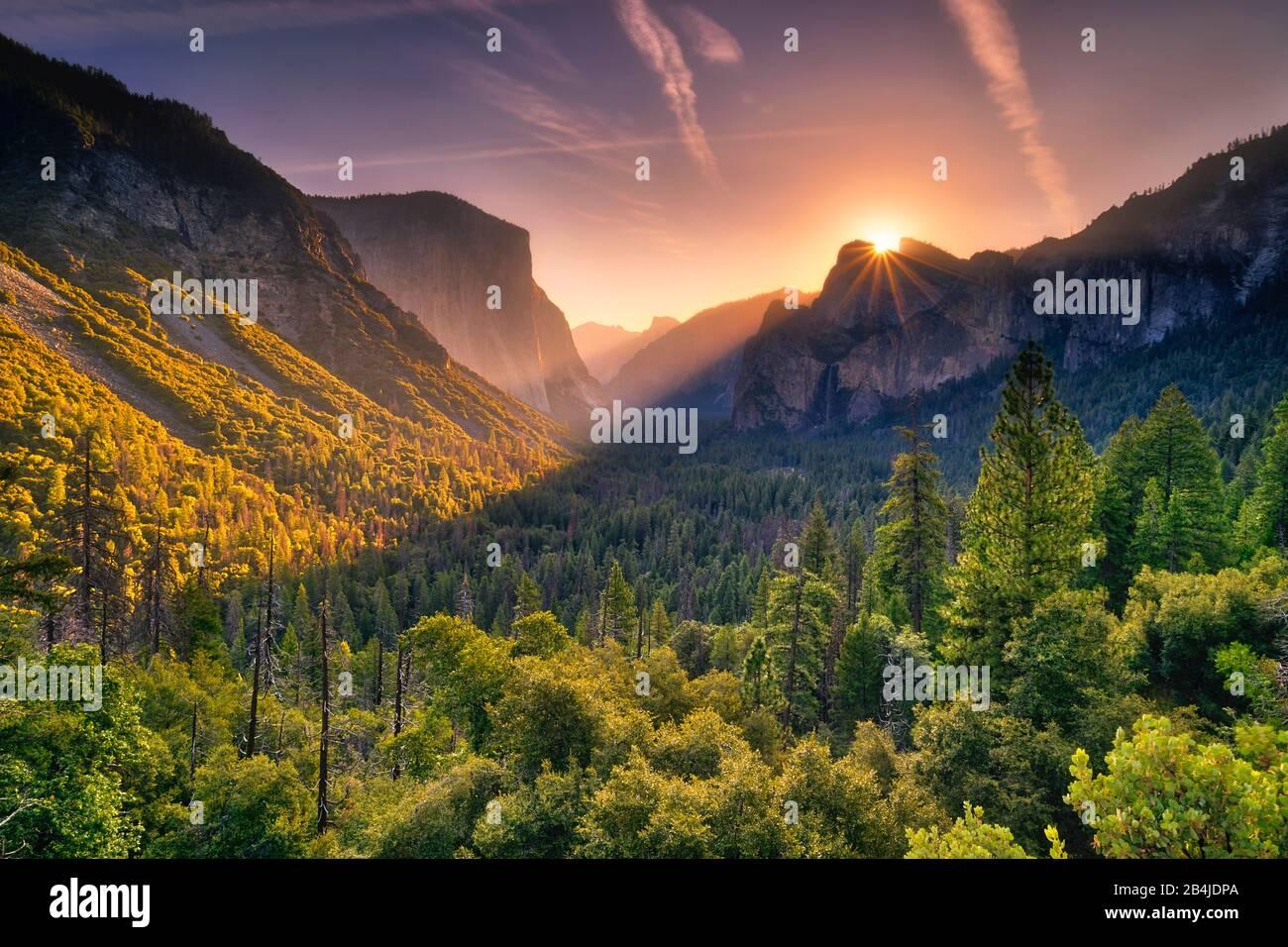 États-Unis, États-Unis D'Amérique, Yosemite National Park, Californie Banque D'Images