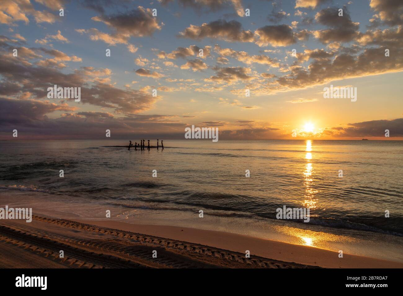 Magnifique lever de soleil près de la plage à Cancun, au Mexique, avec des reflets dorés et une silhouette d'oiseaux de mer sur des poteaux en bois sur la mer des Caraïbes. Banque D'Images