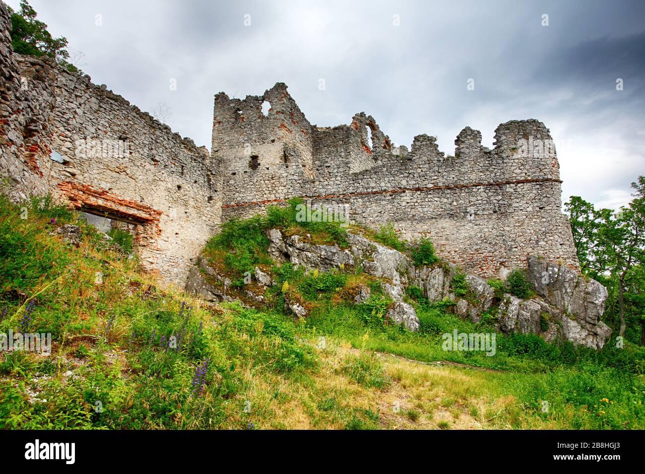 Château de la Slovaquie Tematin Banque D'Images