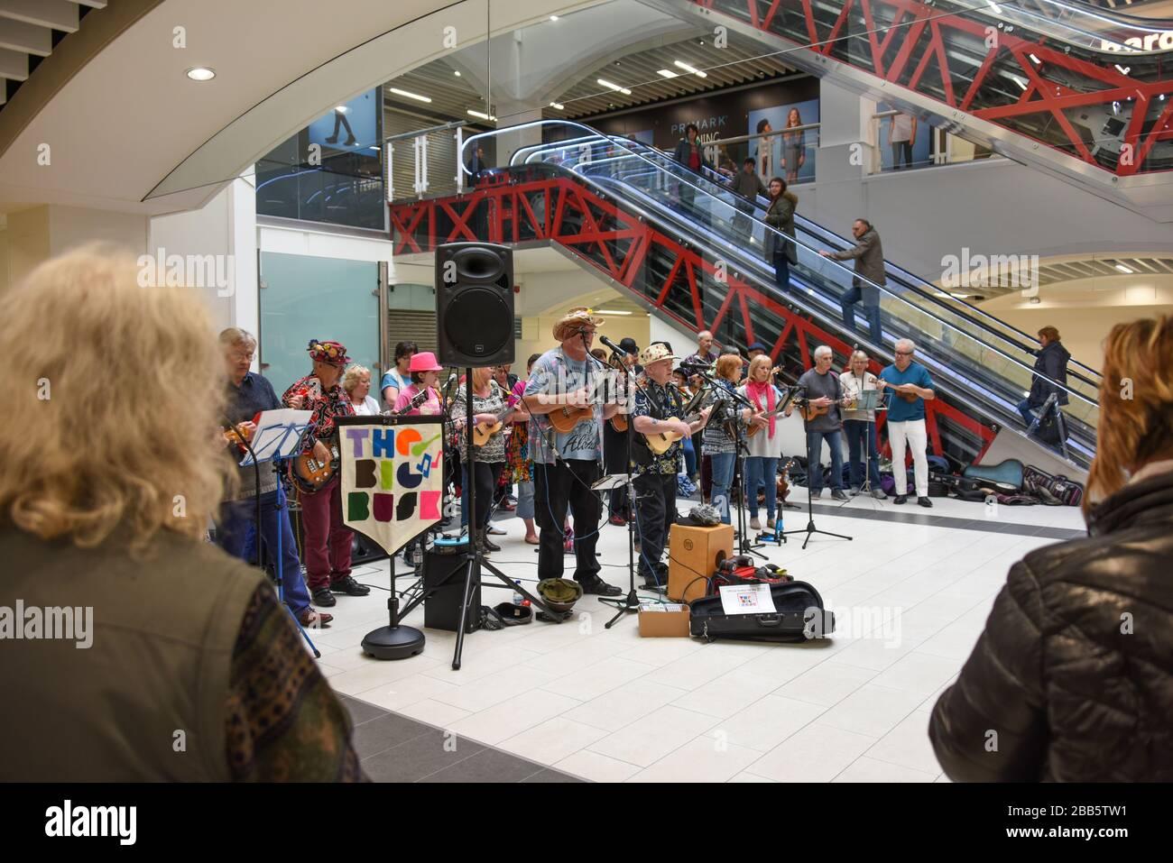 Un grand groupe de musiciens participant à un événement Big Busk dans un centre commercial de Shrewsbury, au Royaume-Uni, à l'aide de personnes sans domicile. Banque D'Images