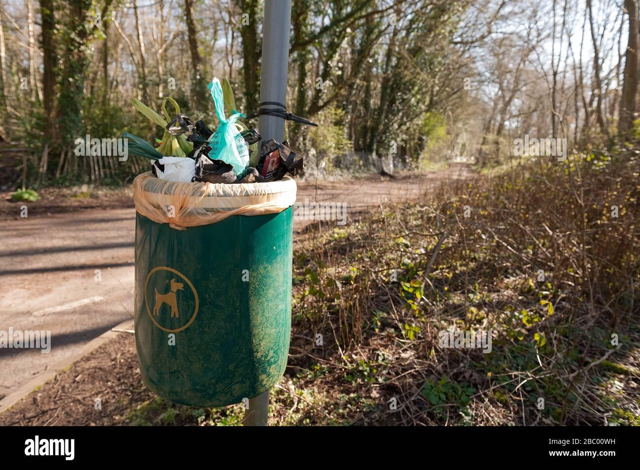 Mélange de sacs en plastique biodégradables et normaux pour le croo-dog débordant sur le sentier de la voie de la campagne au bout de la voie de la poubelle désignée pour le poo-dog Banque D'Images