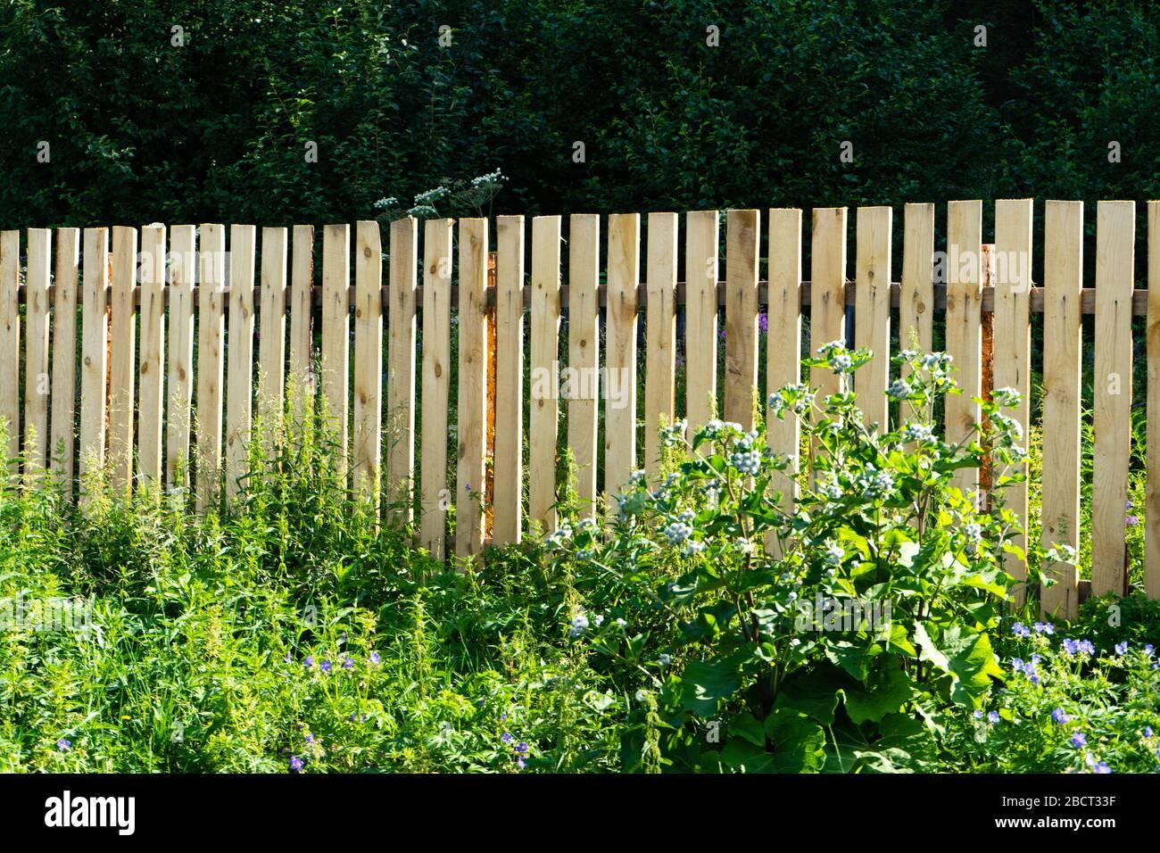Clôture de planche dans le jardin. Longue clôture en bois de style County. Banque D'Images