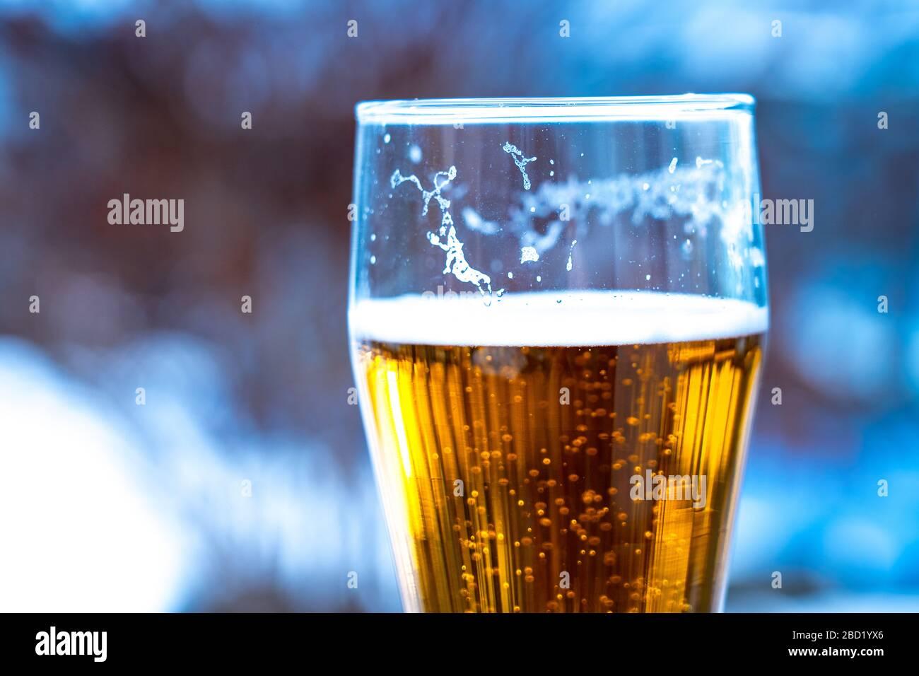 Bière légère dans un gobelet en verre lors d'un pique-nique avec fond de neige. Mousse de bière sur les murs d'un verre au soleil Banque D'Images