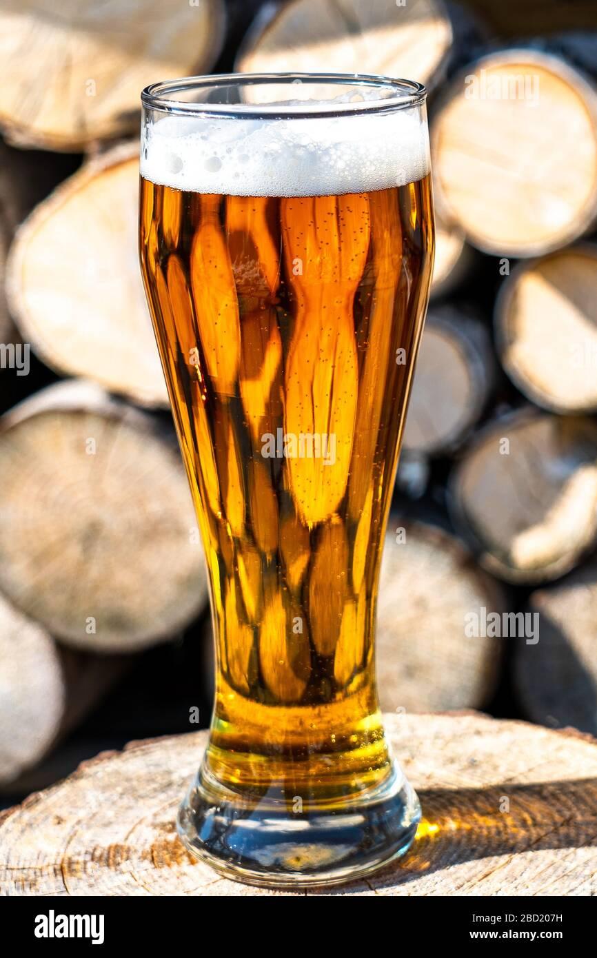 Bière légère dans un gobelet en verre sur le fond de bois de chauffage. Reste dans le pays. Mousse à bière au soleil Banque D'Images