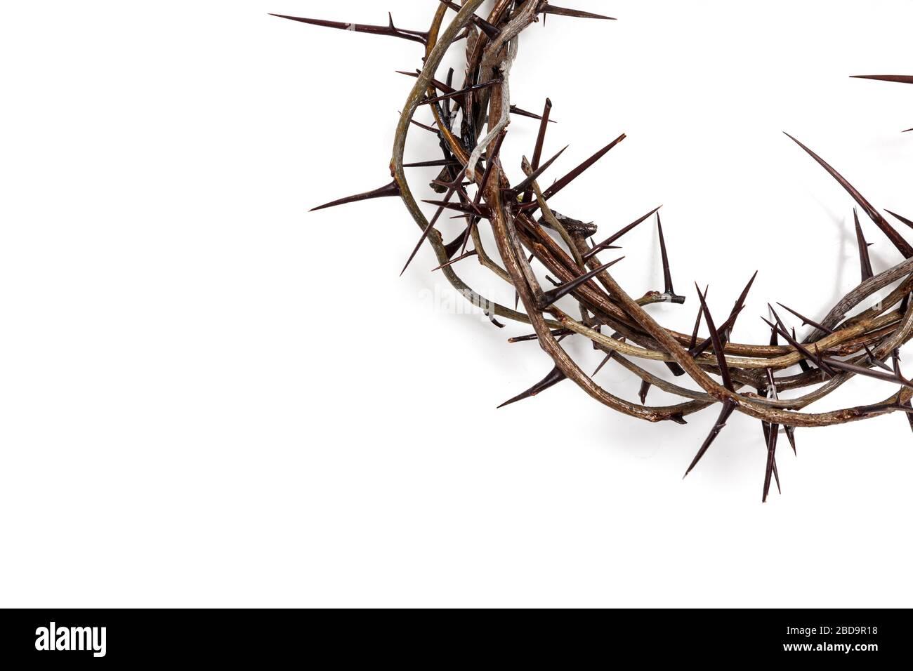 Une couronne d'épines sur un fond blanc. Thème de Pâques Banque D'Images