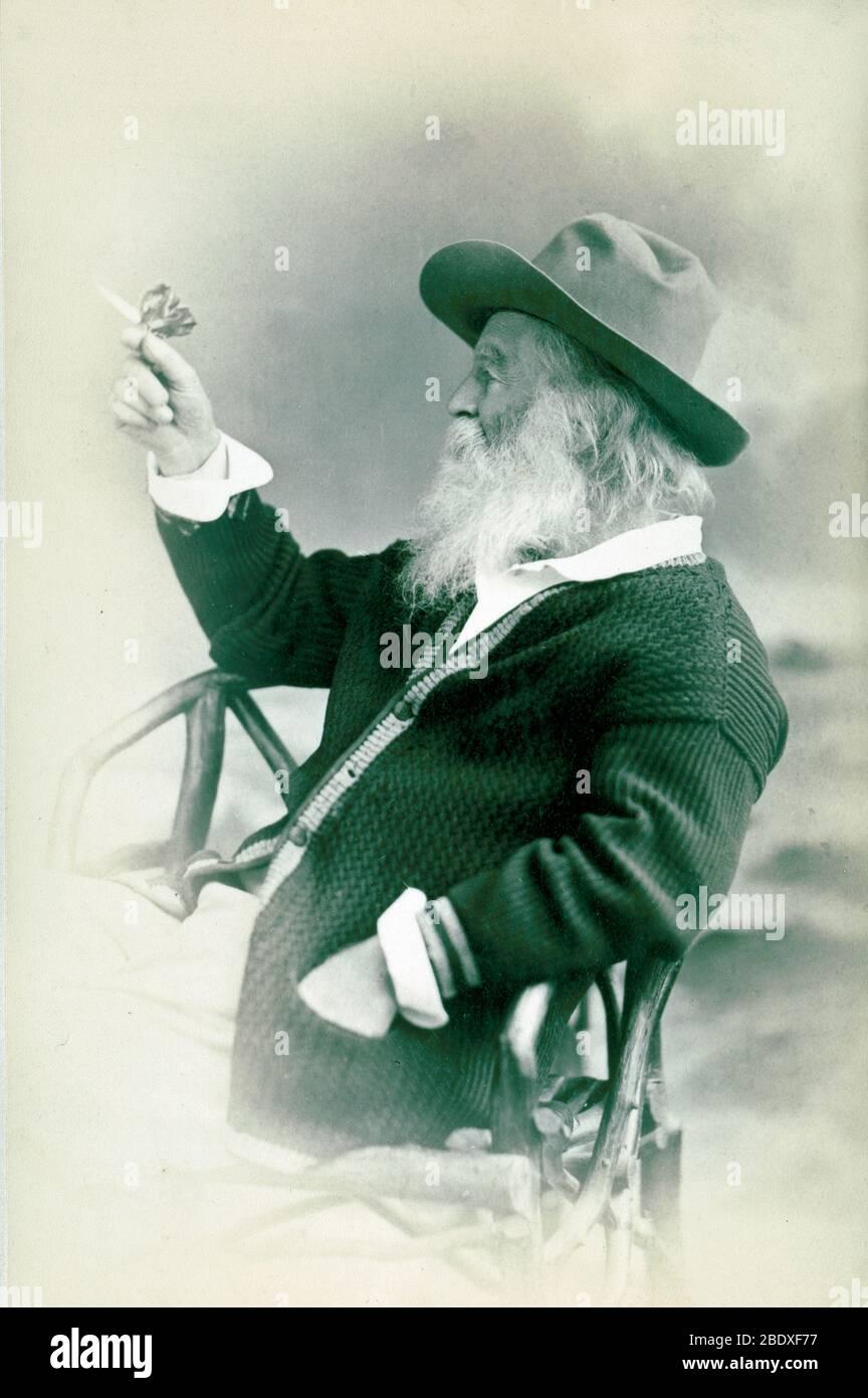 Walt Whitman, poète américain Banque D'Images