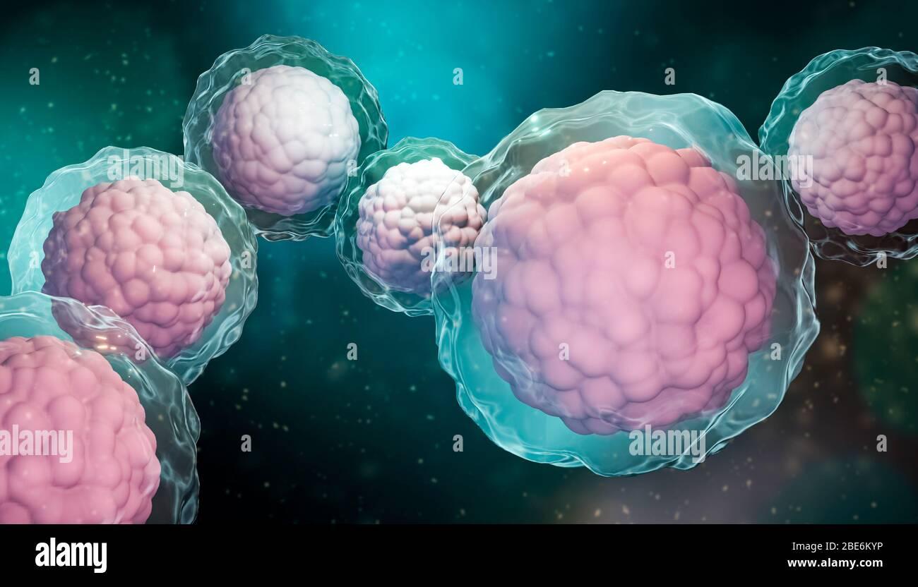 Groupe de cellules souches avec membrane et noyau gros plan sur fond bleu vert. Biomédical, biologie, microbiologie, science, médecine microscopique 3-d Banque D'Images