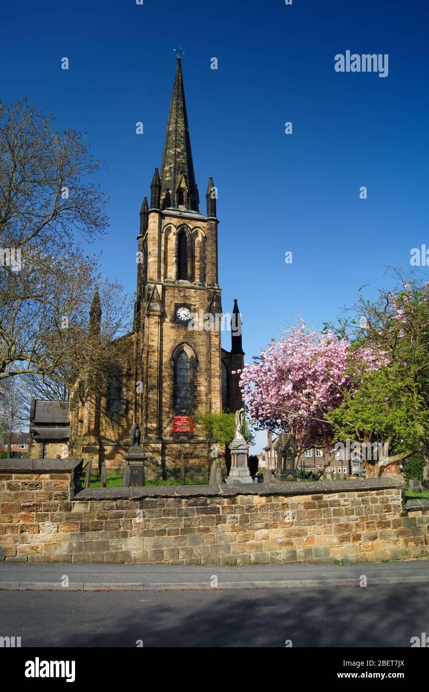 Royaume-Uni, Yorkshire du Sud, Elsecar, église paroissiale de la Sainte Trinité au printemps avec cerisier Blossom en pleine floraison Banque D'Images