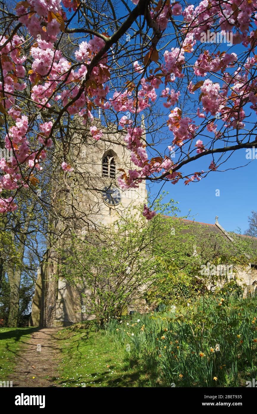 Royaume-Uni, Yorkshire du Sud, Doncaster, Hooton Pagnell, Église des Saints Banque D'Images