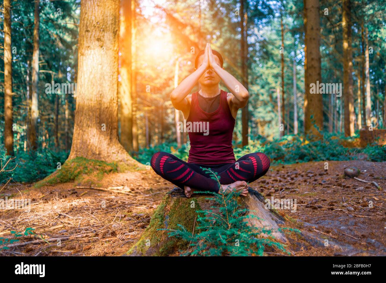 Femme méditant dans le cadre boisé, le yoga du matin dans la forêt. Banque D'Images