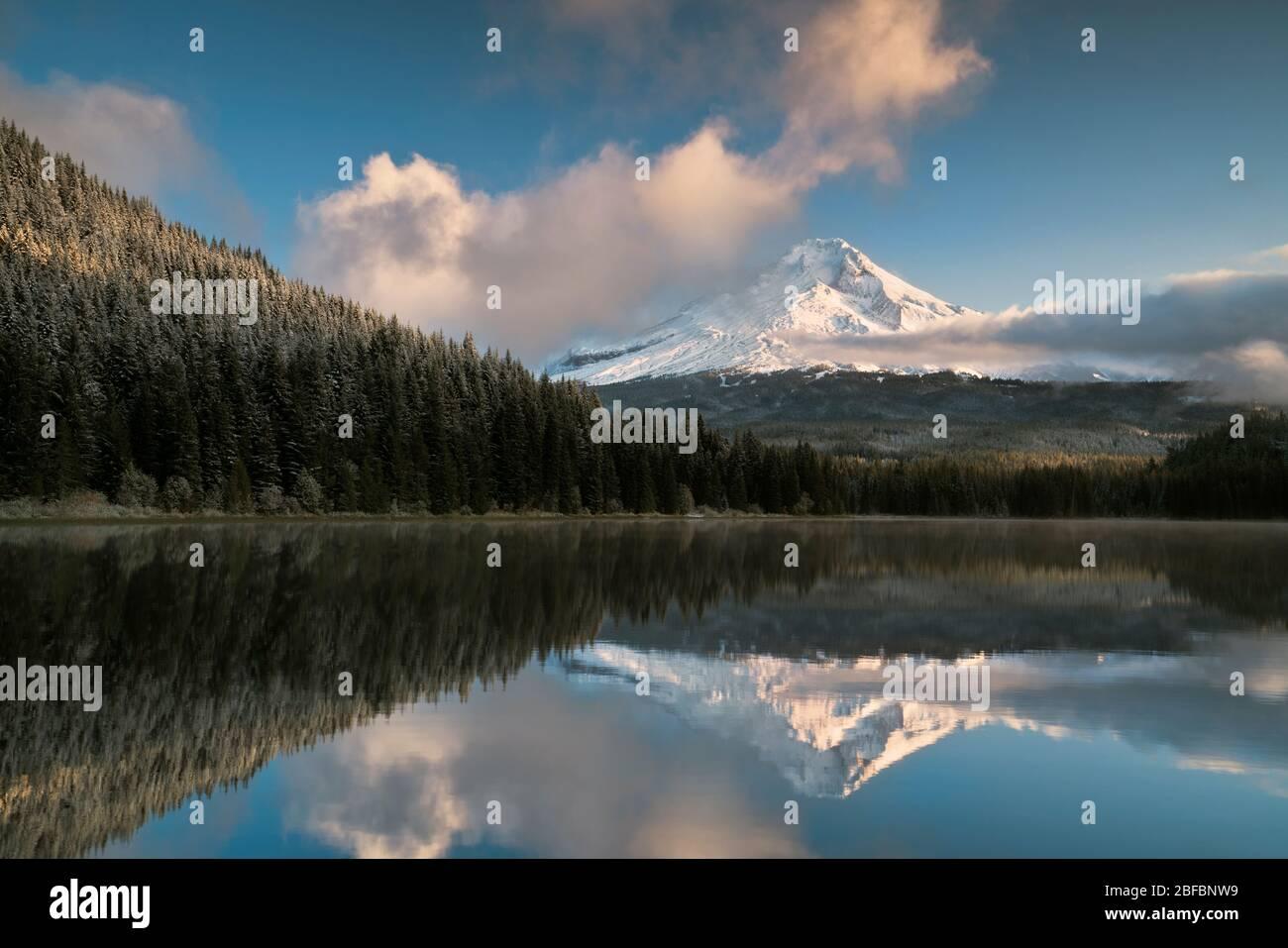 Les nuages de lumière et de tronçonnage du matin révèlent la chute de neige fraîche de l'automne sur le plus haut sommet de l'Oregon, le Mt Hood se reflétant dans le lac Trillium. Banque D'Images