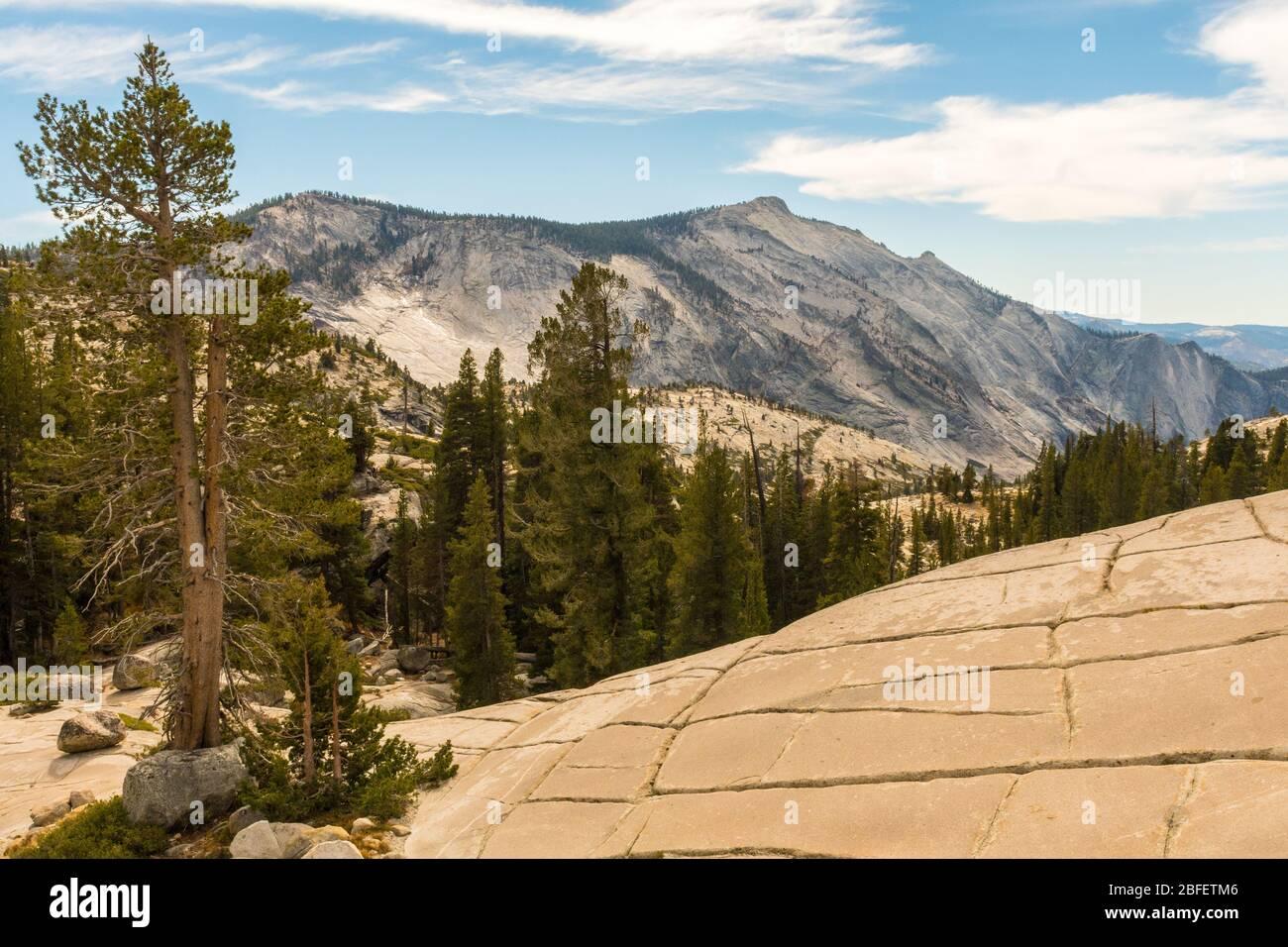 Vue depuis Olmsted point de l'environnement naturel du parc national de Yosemite, Californie, États-Unis Banque D'Images