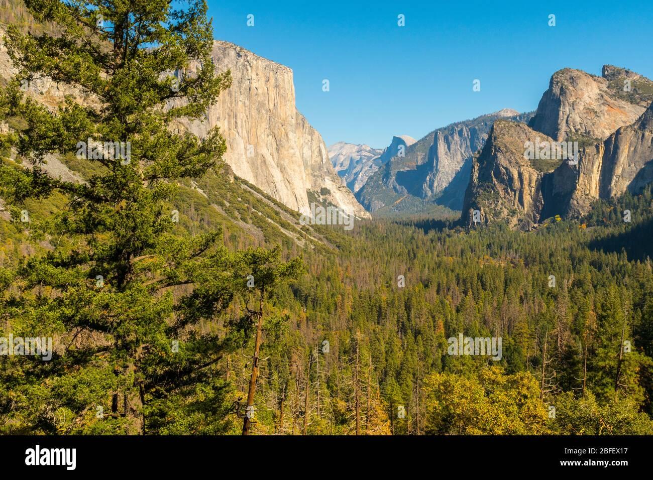 Point de vue sur le tunnel dans le parc national de Yosemite avec El Capitan, Cathedral Rocks et le Half Dome en arrière-plan Banque D'Images