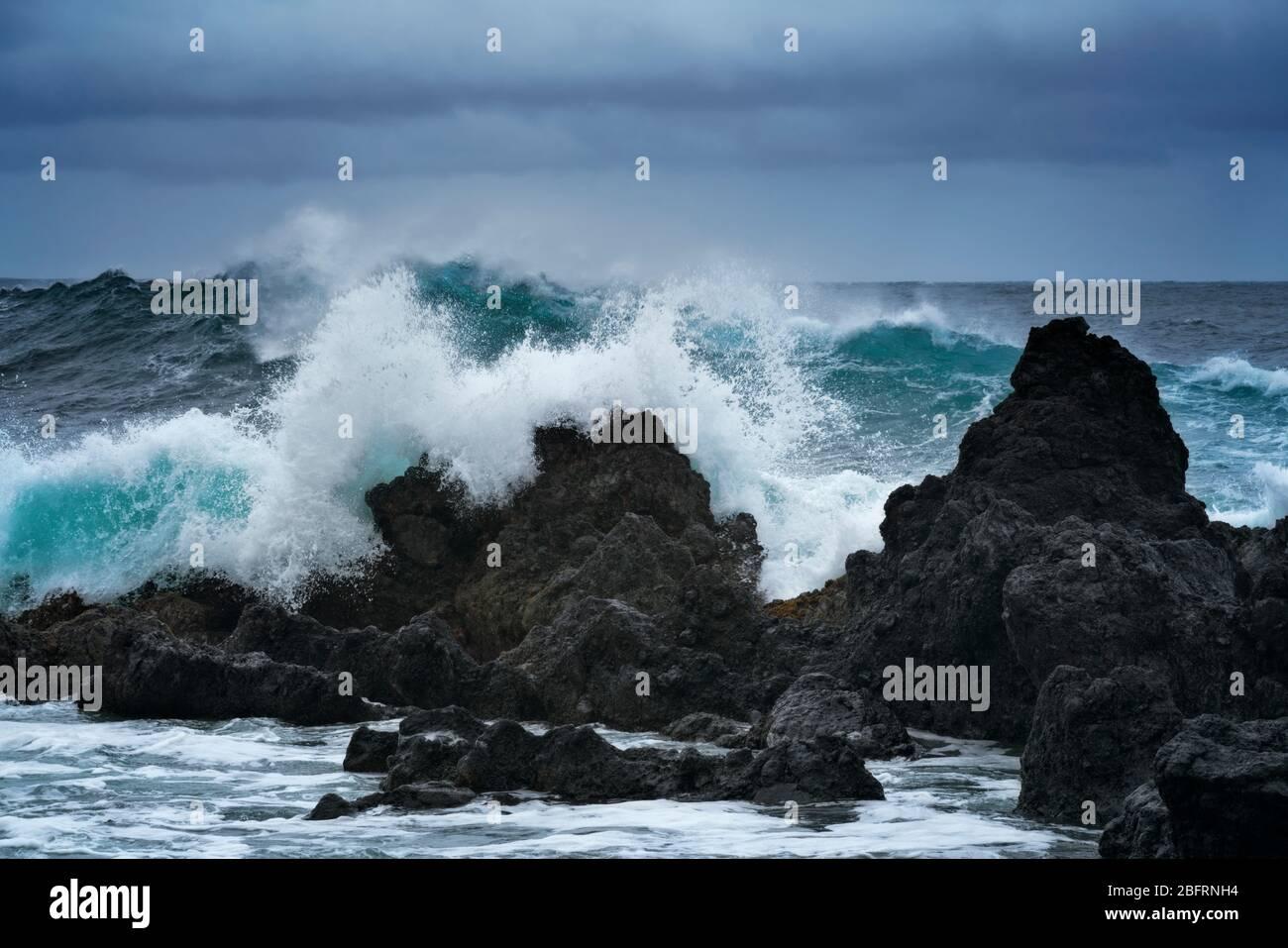 Des vagues de tempête s'construisent et s'écrasent contre les piles de la mer de lave le long de la côte de Hamakua à Laupahoehoe point sur la Grande île d'Hawaï. Banque D'Images