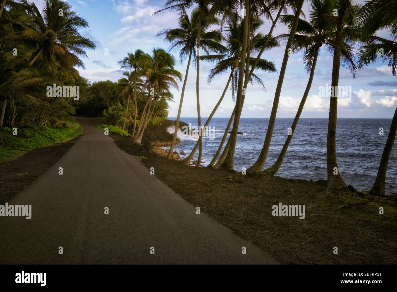 La route 137, connue sous le nom de Red Road, longe la côte du district de Puna, offrant des vues incroyables le long de la Grande île d'Hawaï. Banque D'Images