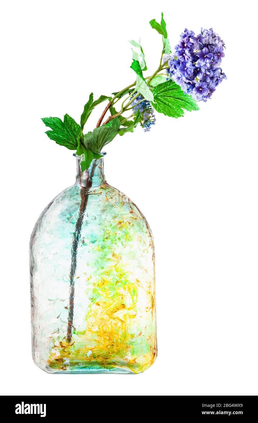 fleurs d'hydracea artificielles dans une bouteille de verre peinte à la main isolée sur fond blanc Banque D'Images