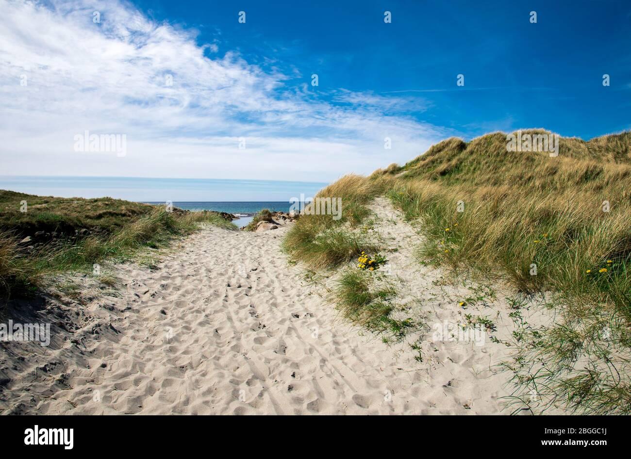 Un sentier longeant les dunes jusqu'à la plage de Refsnesstranda dans une belle journée ensoleillée près de Naerbo, Norvège, mai 2018 Banque D'Images
