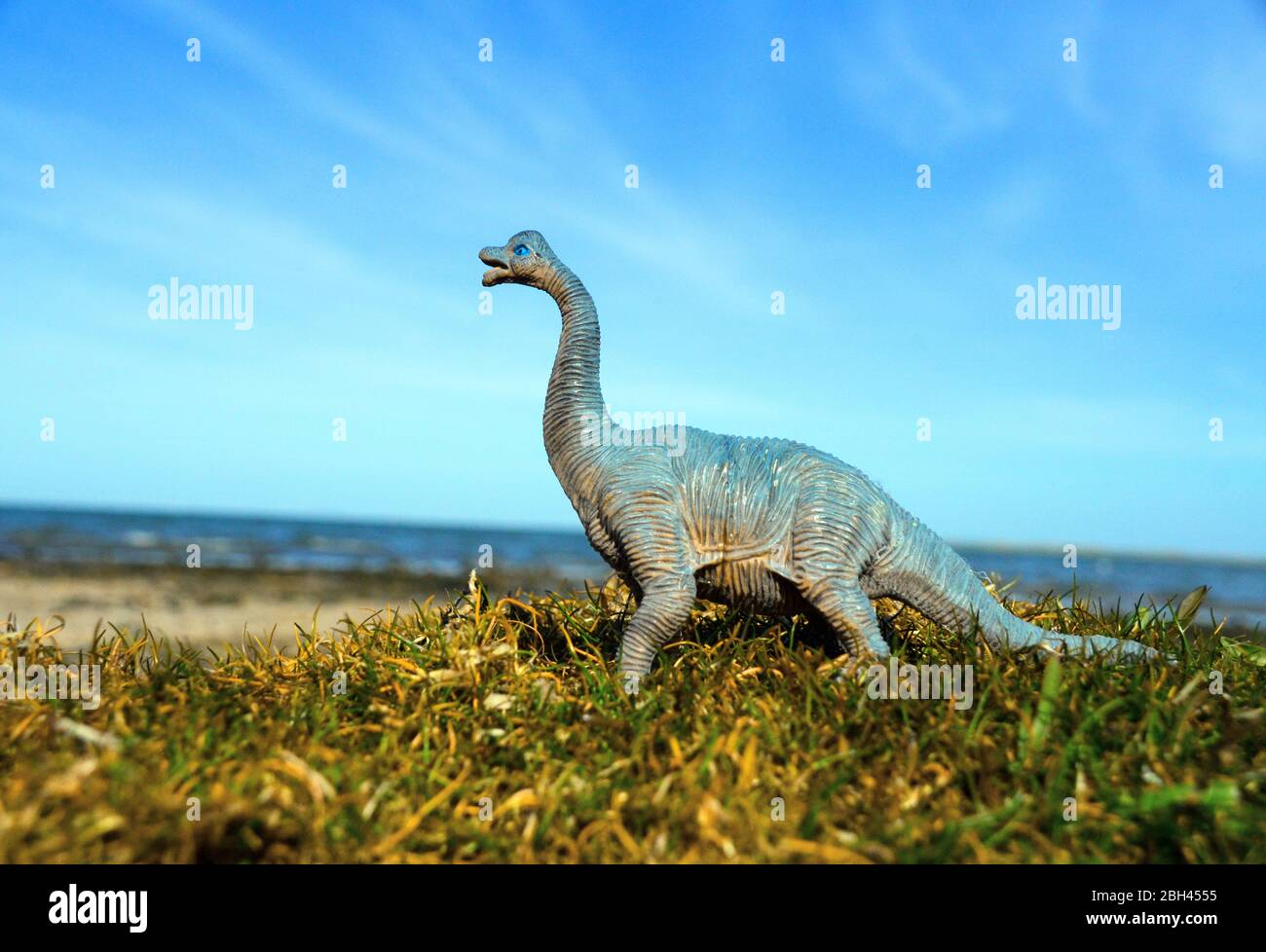 un dinosaure réplique jouet dans un cadre extérieur naturel. Banque D'Images