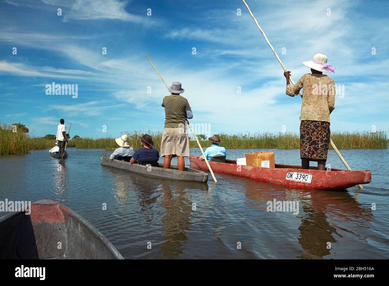 Les touristes étant polés cependant dans mokoros (dugout canoes), le Delta d'Okavango, Botswana, Afrique Banque D'Images
