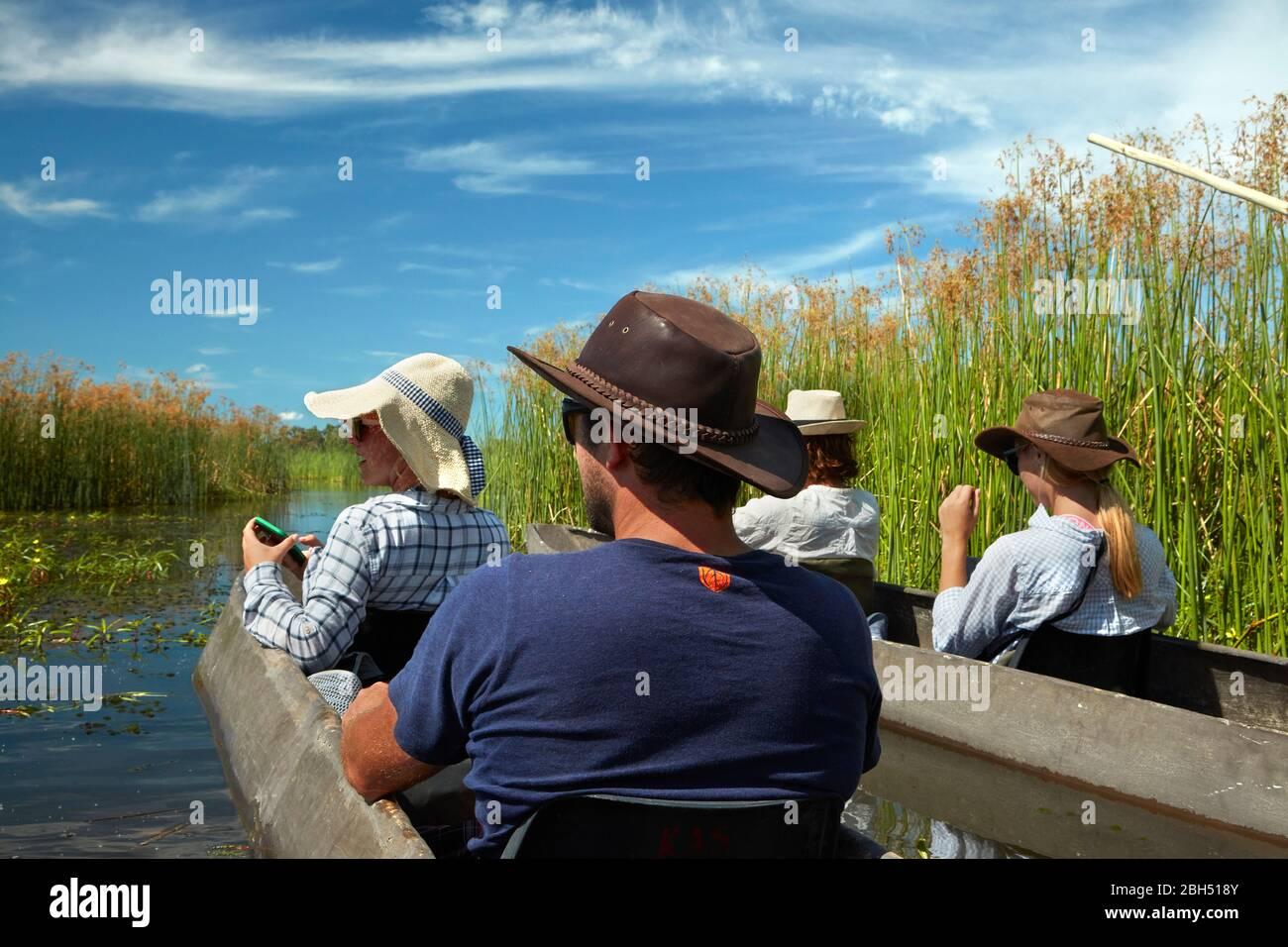 Touristes en train d'être polés dans mokoros (dugout canoes), dans le Delta d'Okavango, au Botswana, en Afrique Banque D'Images