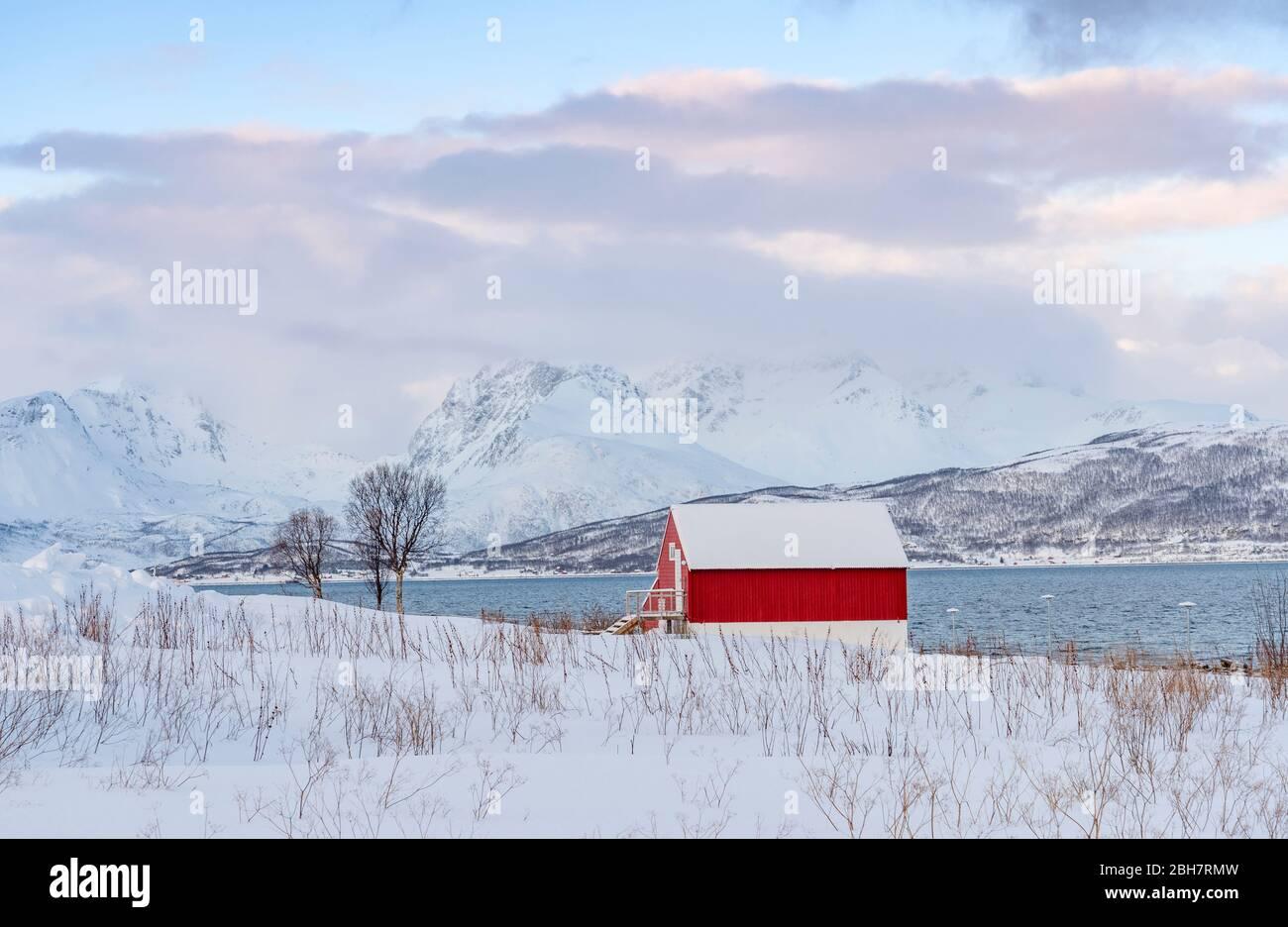 Paysage d'hiver à l'aube polaire sur l'île de Kvaløya et le fjord près de Tromso, au nord de la Norvège Banque D'Images