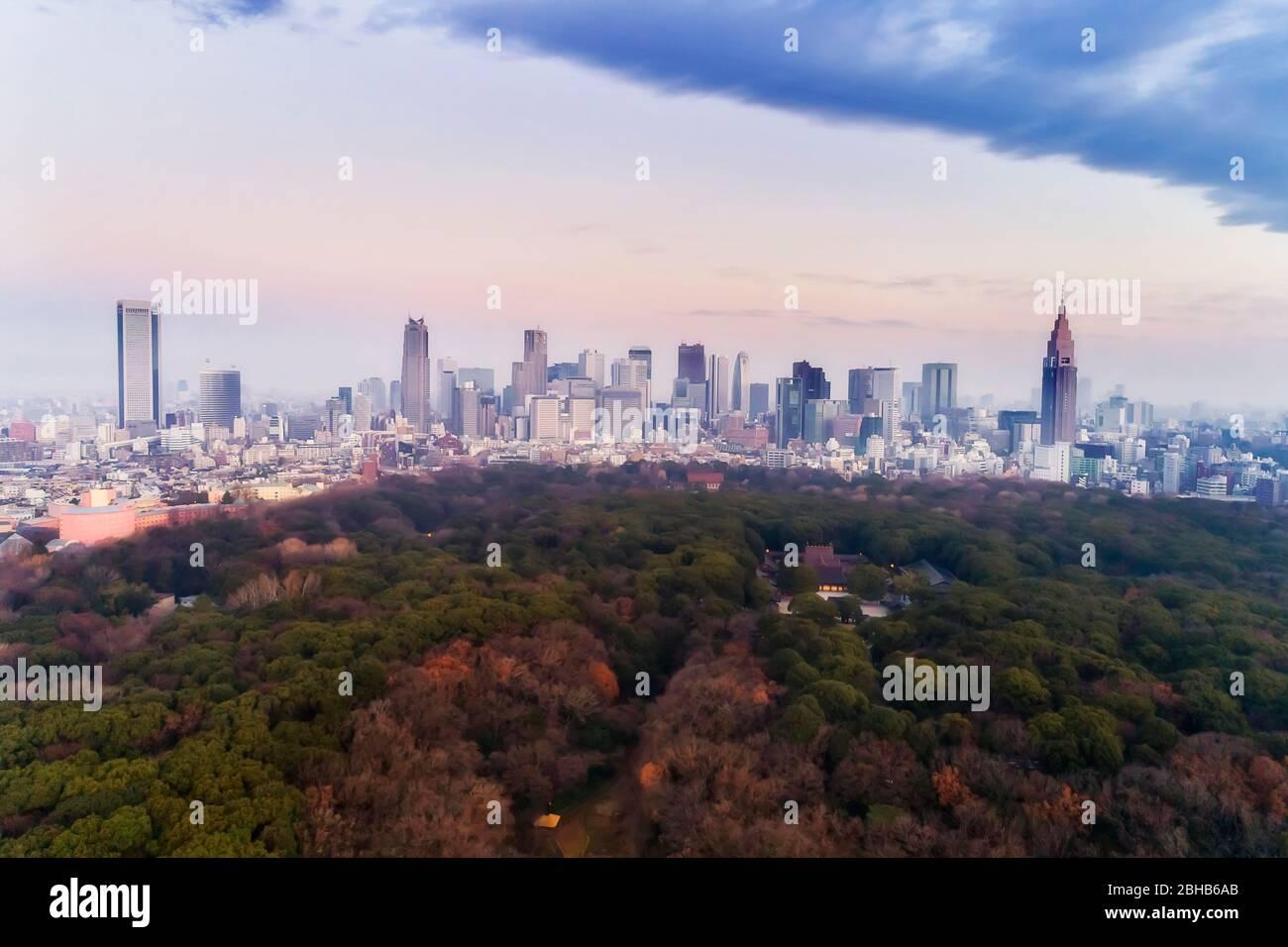 Parc public au milieu de la ville de Tokyo près du quartier des affaires de Shinjuku et de la gare en vue aérienne au lever du soleil. Banque D'Images