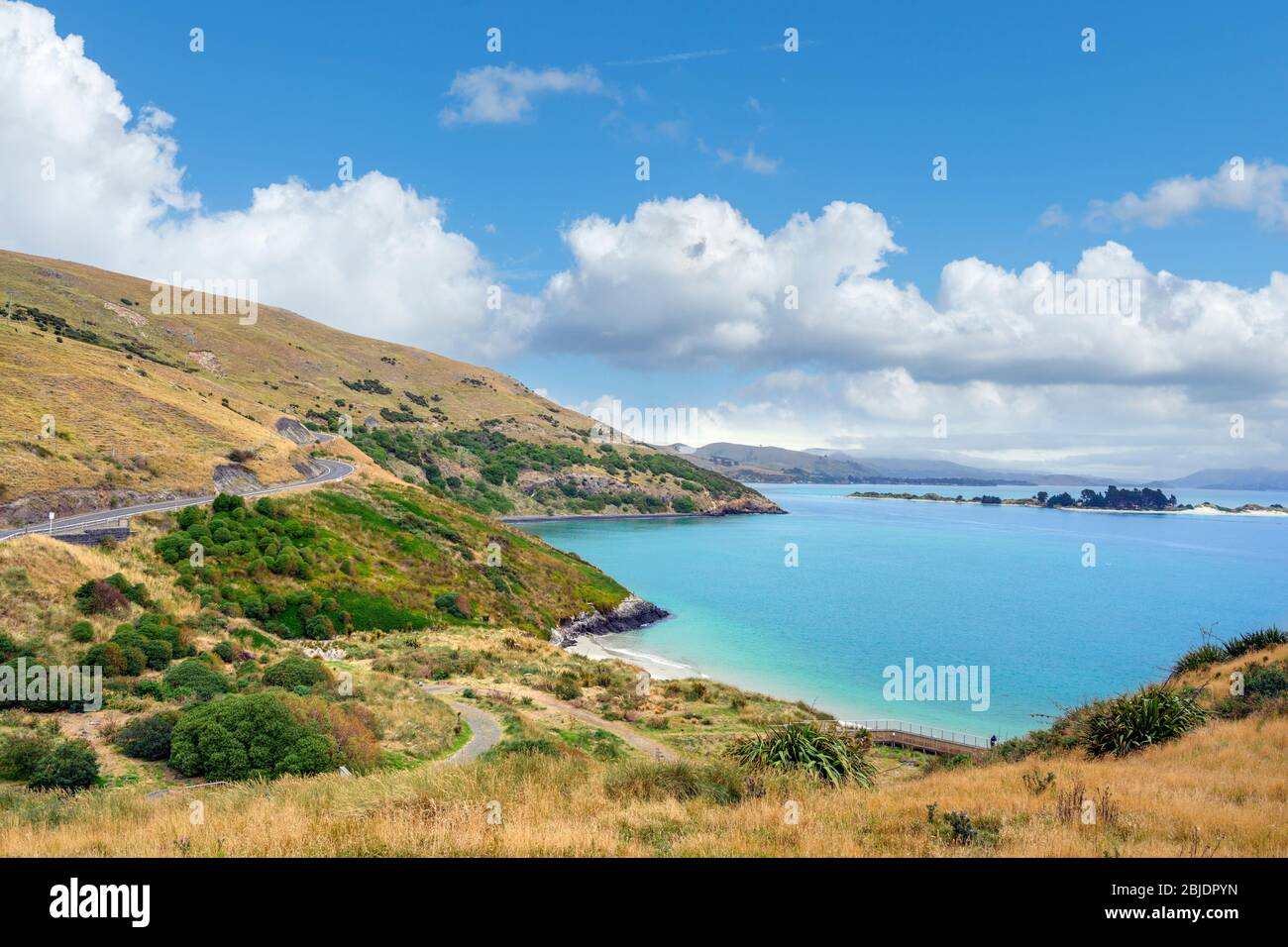 Plage à Taiaroa Head près du Royal Albatros Center, Dunedin, Otago, Nouvelle-Zélande Banque D'Images