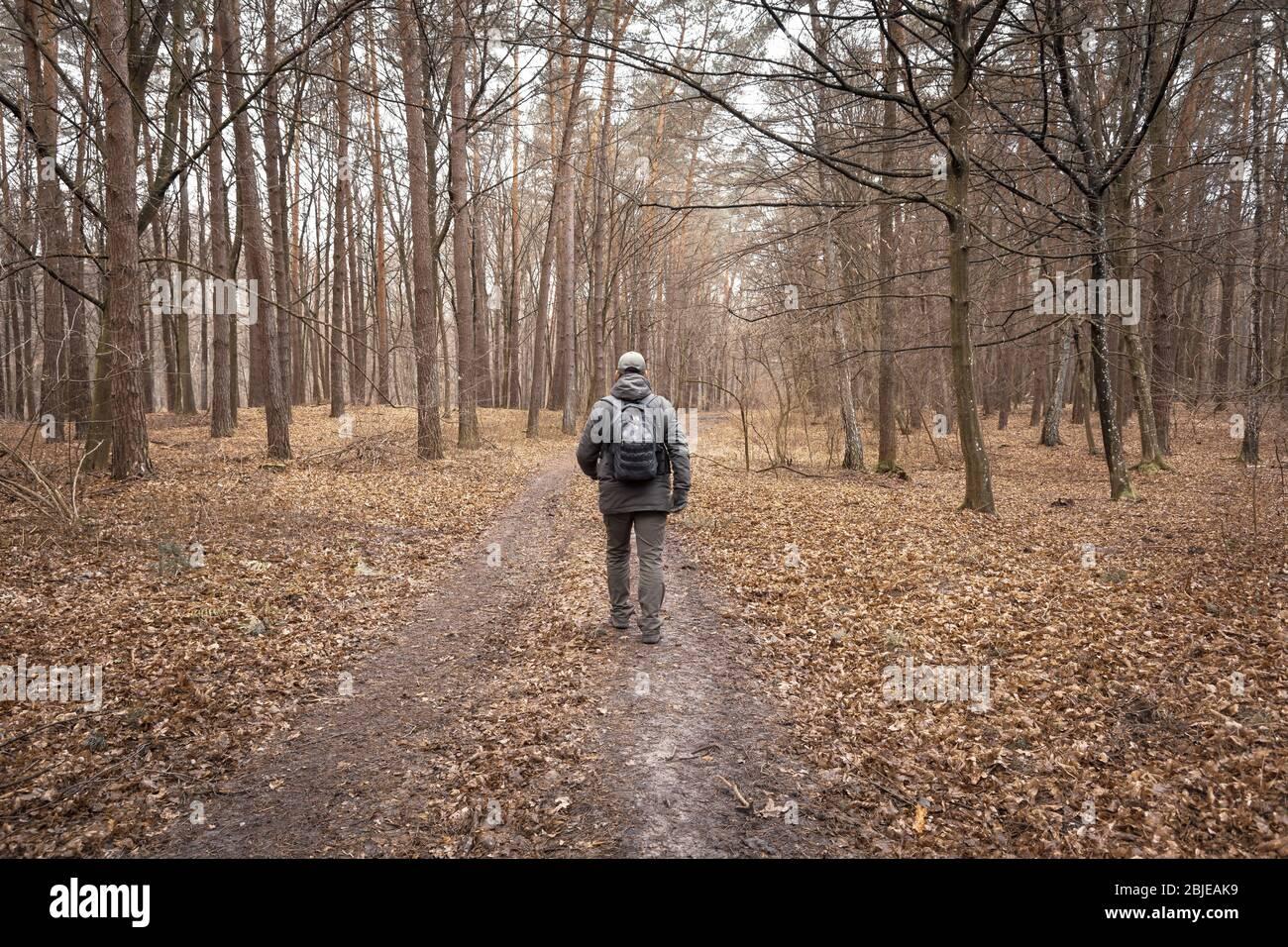 Un homme avec un sac à dos marchant dans la forêt d'automne Banque D'Images