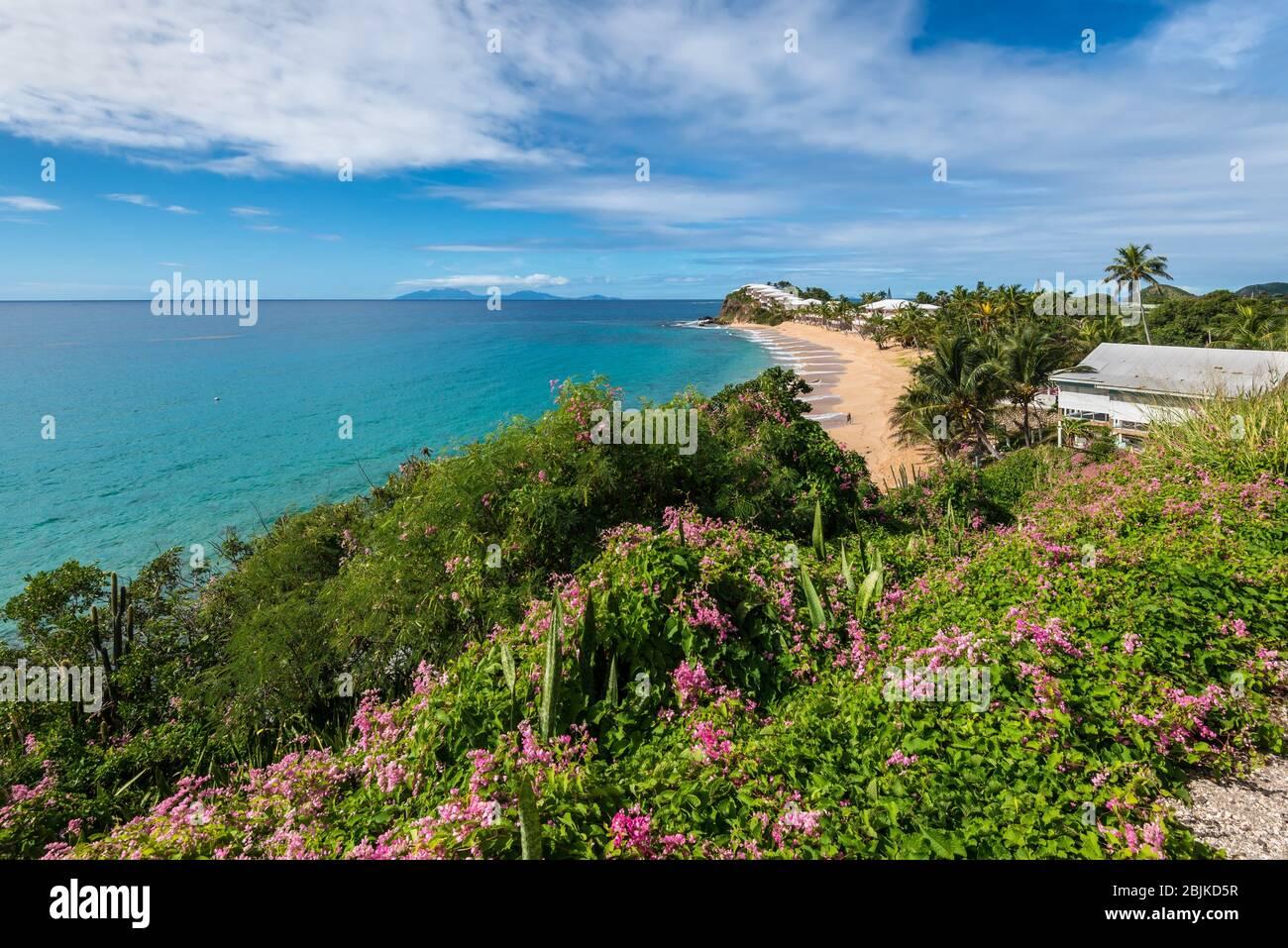 Grace Bay and Beach, St. Mary, Antigua, Leeward Islands, Antilles, Caraïbes, Amérique centrale. Banque D'Images