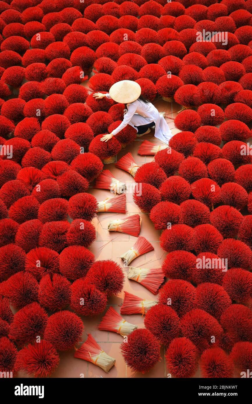 Femme qui récolte des bâtons d'Encens séchés, Hanoi, Vietnam Banque D'Images