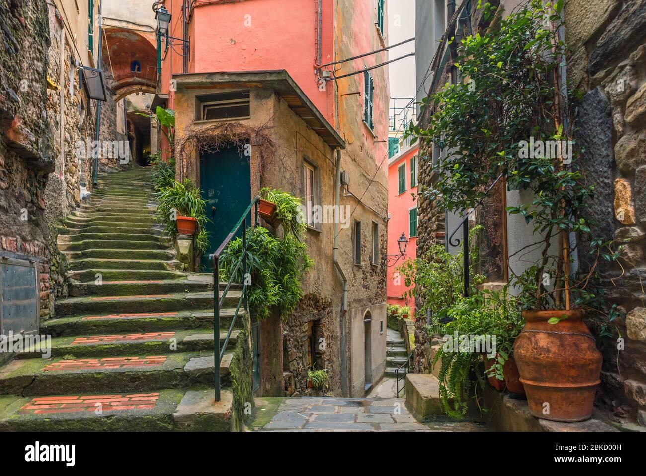 Ancienne rue italienne de la ville Vernazza avec escaliers médiévaux et pots avec plantes vertes avec personne sur la côte de Cinque Terre, Ligurie, Italie, Europe Banque D'Images