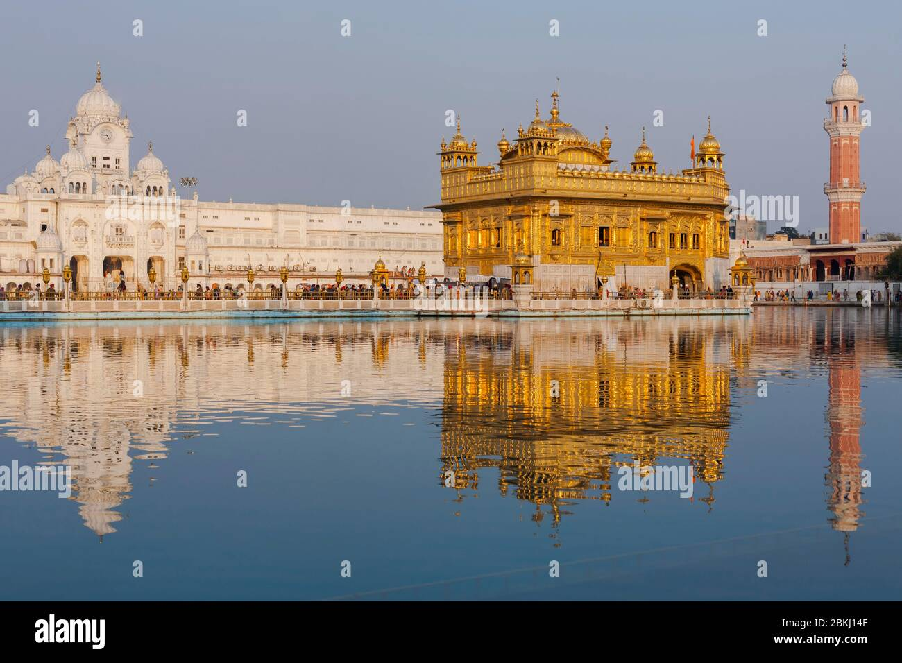 Inde, État du Pendjab, Amritsar, Harmandir Sahib, Temple d'or sous le soleil, avec réflexion dans le bassin du Nectar, Amrit Sarovar, lieu Saint du sikhisme Banque D'Images
