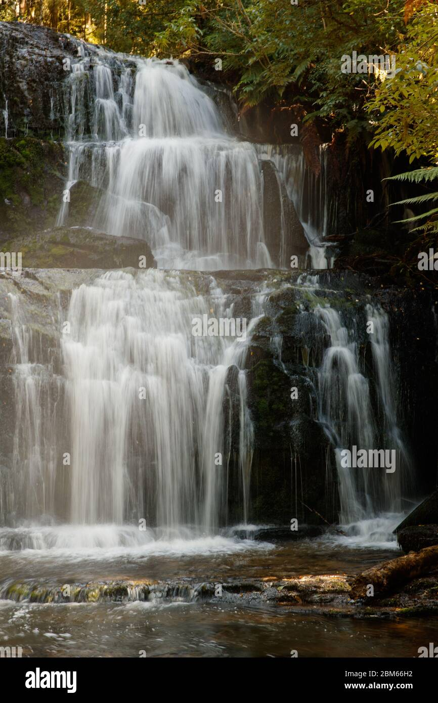Purakuunui Falls, Owaka, Nouvelle-Zélande Banque D'Images