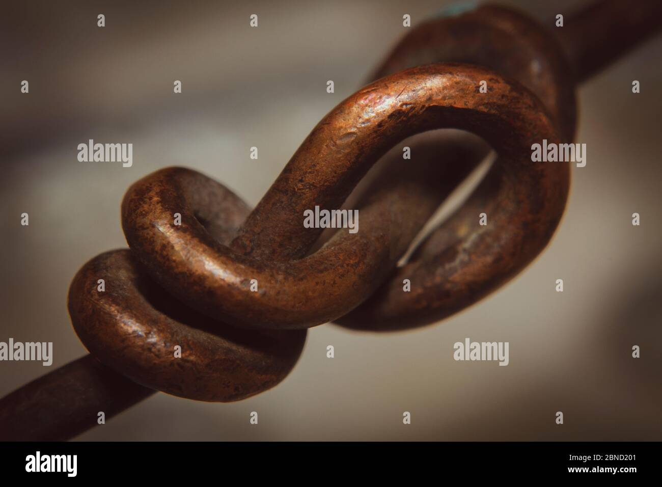 Abstrait signe ou concept de la puissance de la vie avec l'établissement d'une relation forte Banque D'Images