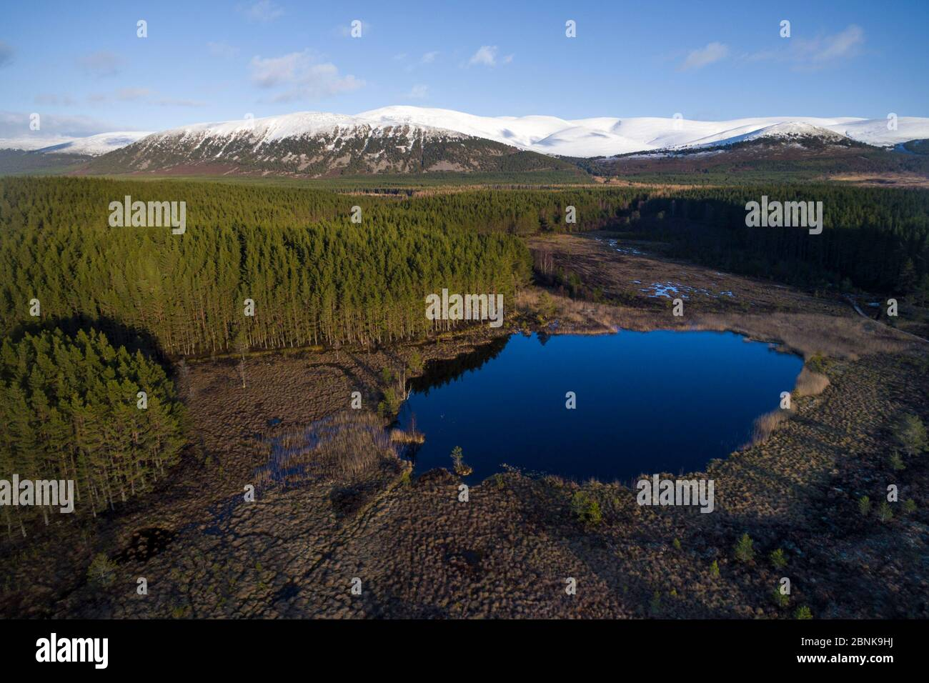 Lochan avec forêt de pins et montagnes enneigées derrière, le Parc National de Cairngorms, en Écosse, au Royaume-Uni, en mars 2016. Banque D'Images