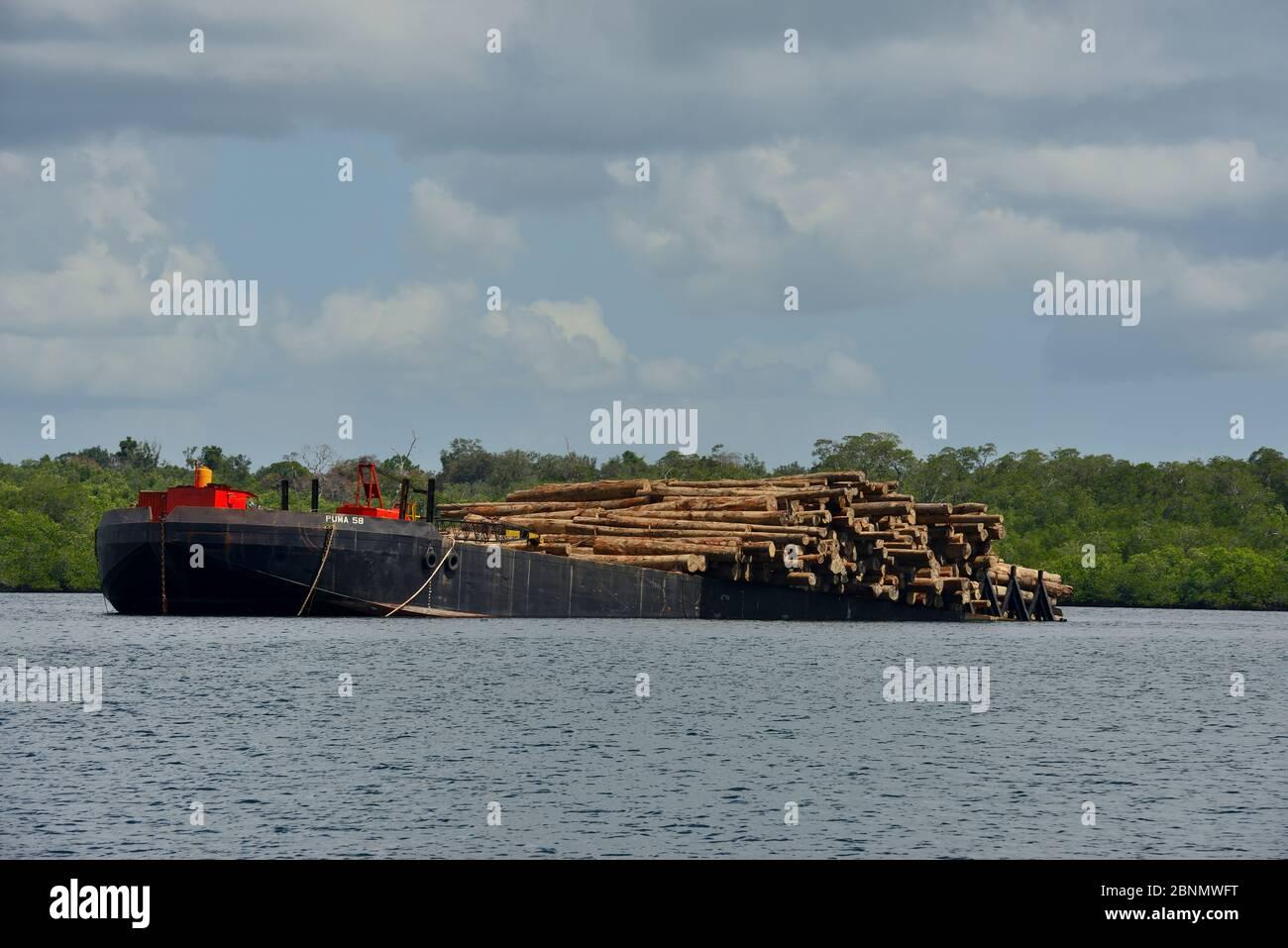 Bateau chargé de bois provenant de forêts locales, Siberut, Sumatra, juillet Banque D'Images