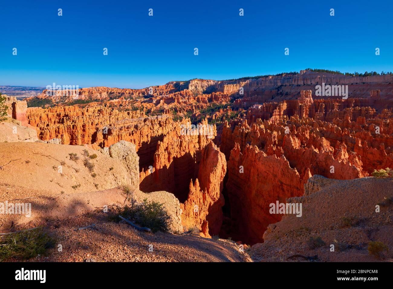 États-Unis, États-Unis d'Amérique, Bryce Canyon, Utah, Sud-Ouest des États-Unis, Banque D'Images