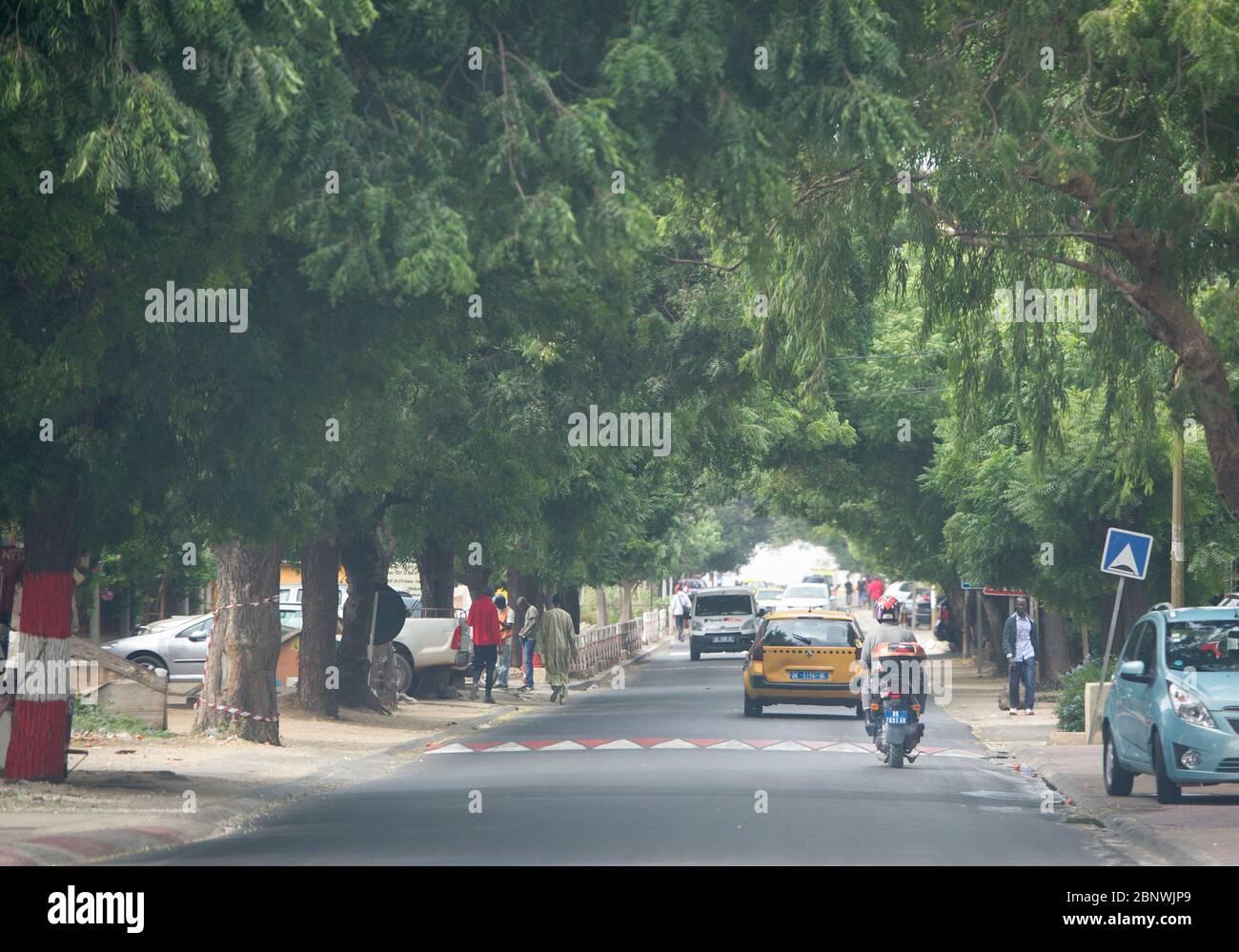 Vie quotidienne, scène de rue, Dakar, Sénégal, Afrique de l'Ouest. Banque D'Images