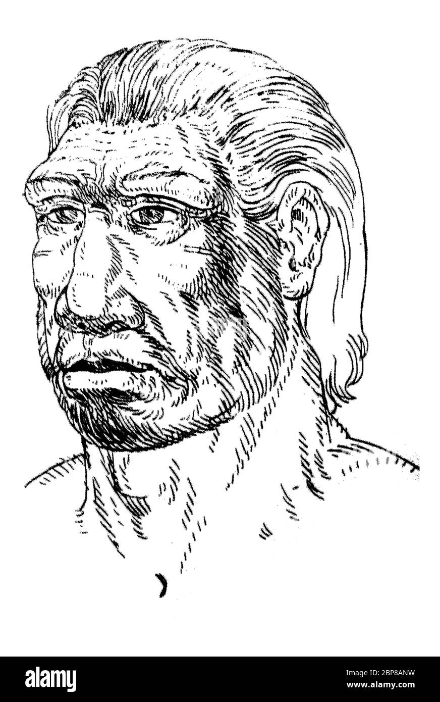 Portrait de l'homme Néandertal. Aussi appelé Homo sapiens neanderthalensis. Tiré du Musée d'Archéologie de Catalogne, Barcelone, Espagne Banque D'Images
