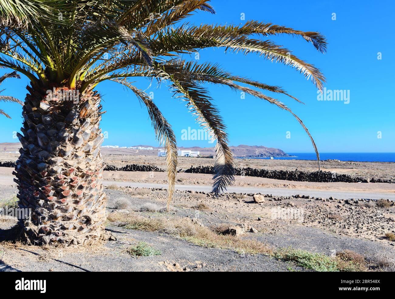 Paysages bruns de la ville de Costa Teguise, Lanzarote, sélectif Banque D'Images