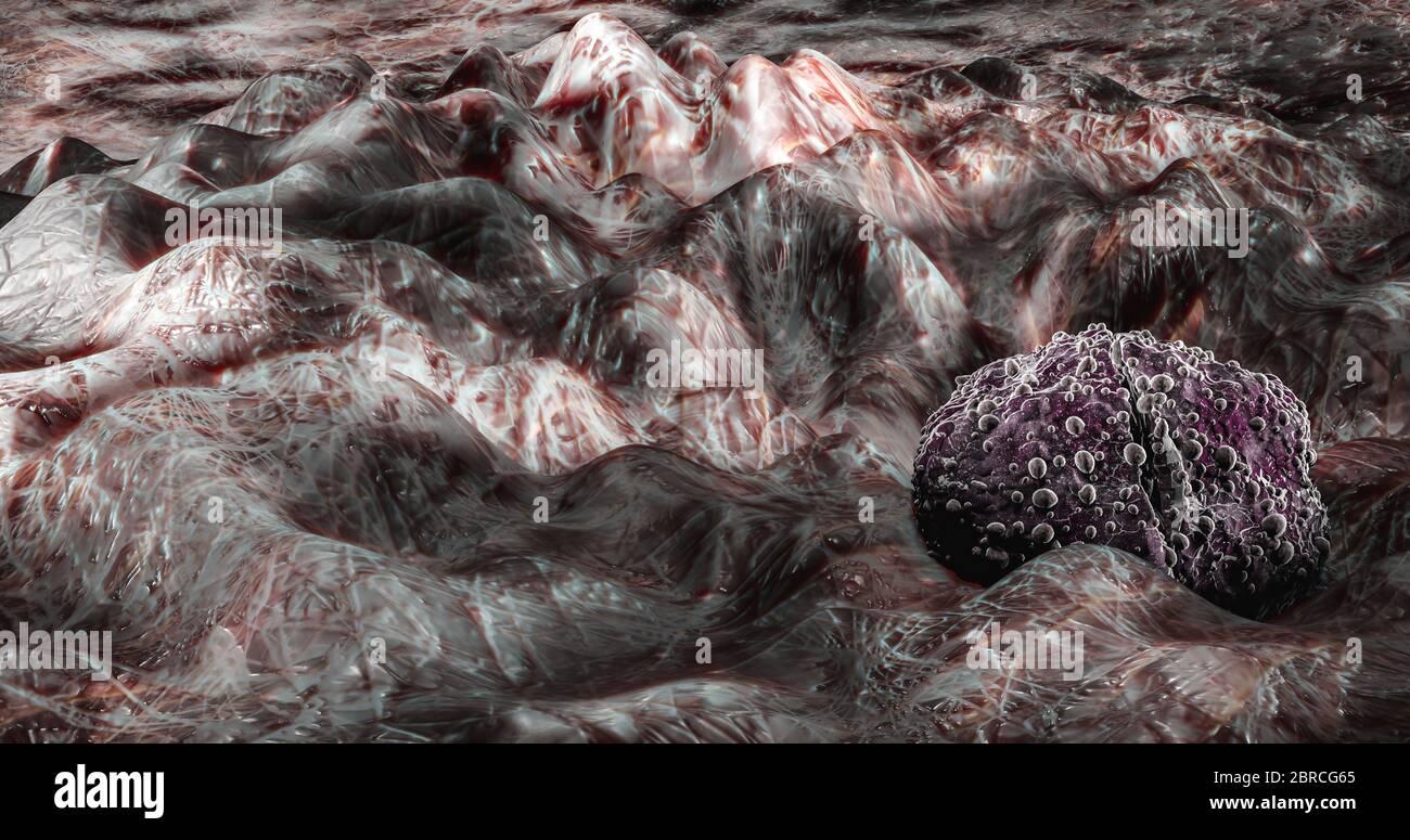 Science photo de bactéries UN diplococcus est une bactérie ronde qui se produit généralement sous la forme de deux cellules jointes Banque D'Images